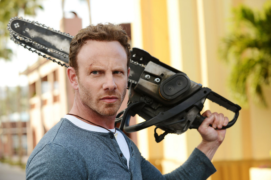 Ian Ziering as Fin Shepard .