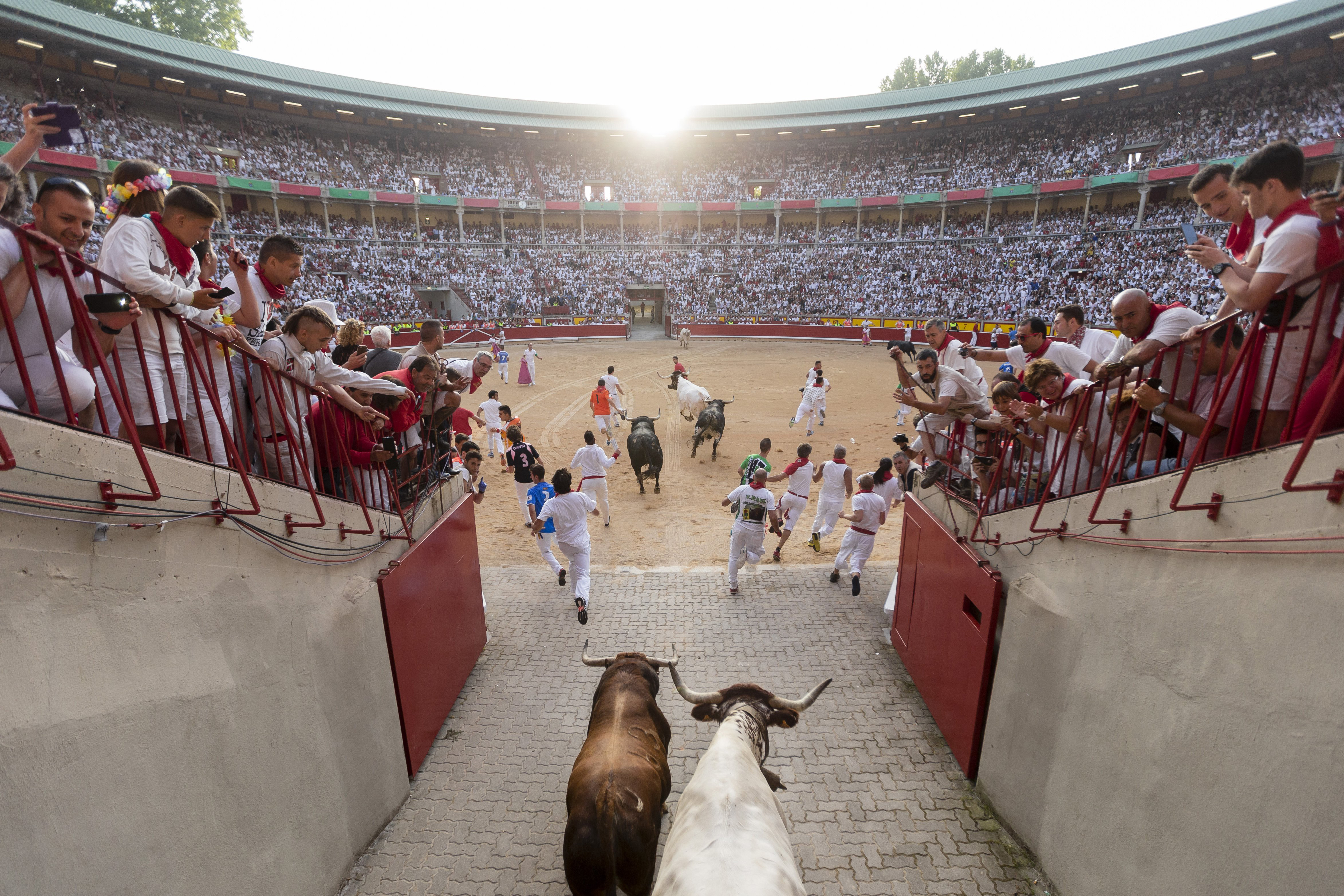 Revelers are chased by Jandilla's ranch fighting bull on the entrance to the bullring during the running of the bulls of the San Fermin festival in Pamplona, Spain on July 7, 2015.