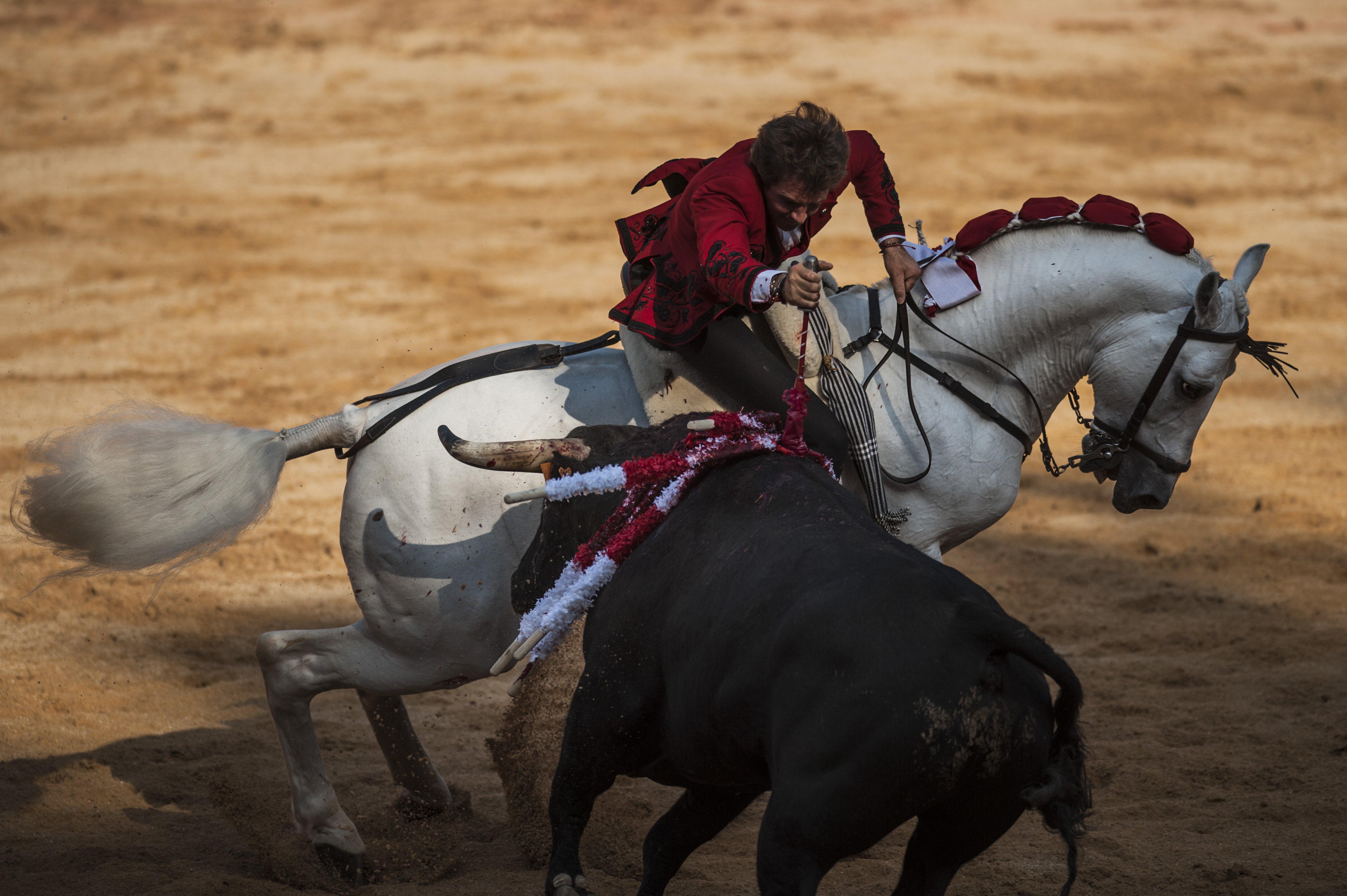 Spanish mounted bullfighter Pablo Hermoso de Mendoza performs during a horseback bullfight at San Fermin Fiestas, in Pamplona, Spain on July 6, 2015.