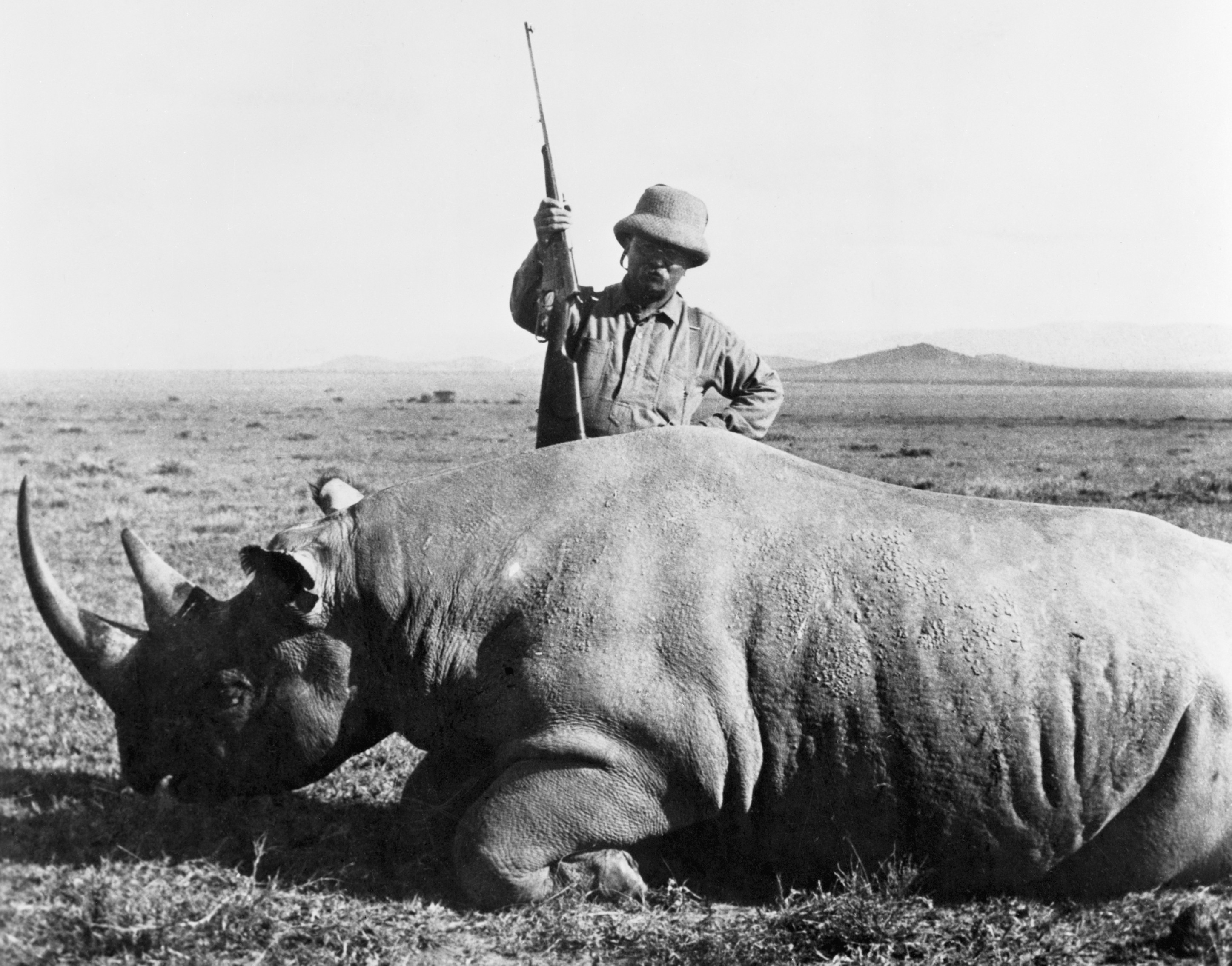 After serving as President of the United States in 1909, Teddy Roosevelt went on an 11-month, 2,500-mile safari. The expedition was funded as a scientific expedition by the Smithsonian Institution, according to the Theodore Roosevelt Association. On the trip, Roosevelt trapped or shot over 11,000 animals, including elephants, hippos, and white rhinos.