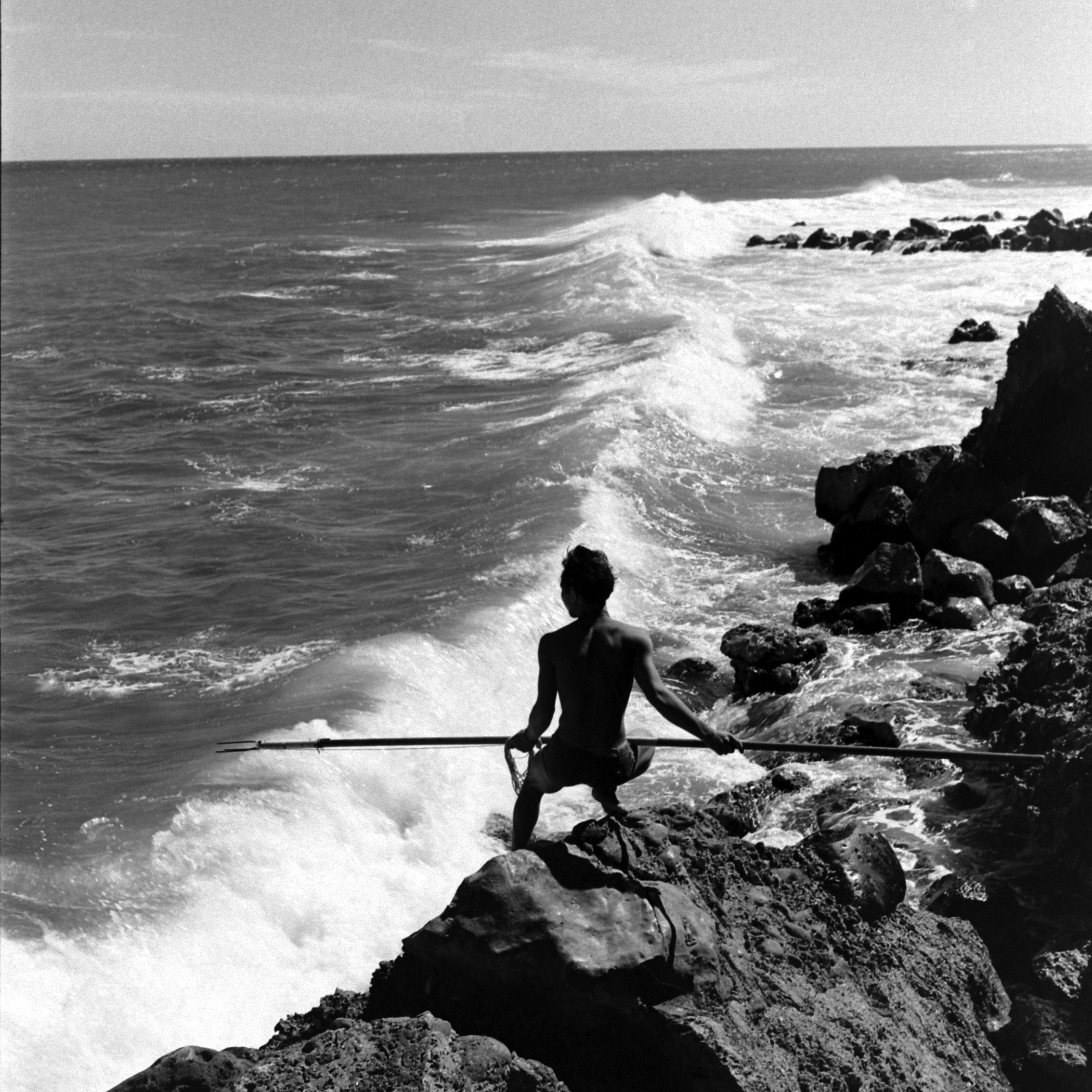A fisherman with a spear prepares to make a catch.