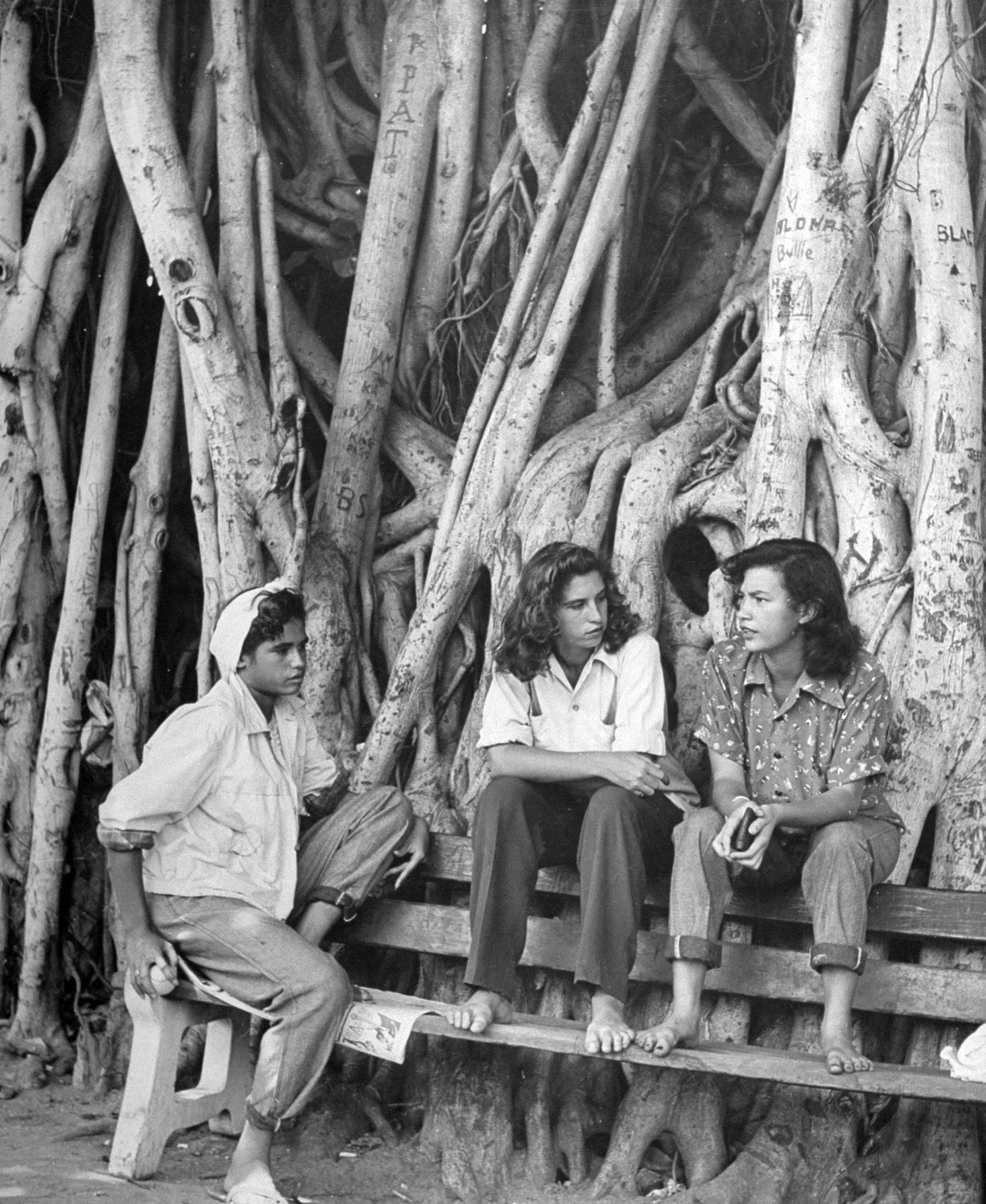 <b>Caption from LIFE.</b> Waikiki tomboys, under a banyon on beach are (from left) Marion Woolsley, 14, Chinese-Hawaiian-English; Patricia Cameron, 16, Portuguese-Scotch-Irish; Beatrice Clarke, 16, Hawaiian-Chinese-German. Canoes are stored under roots.