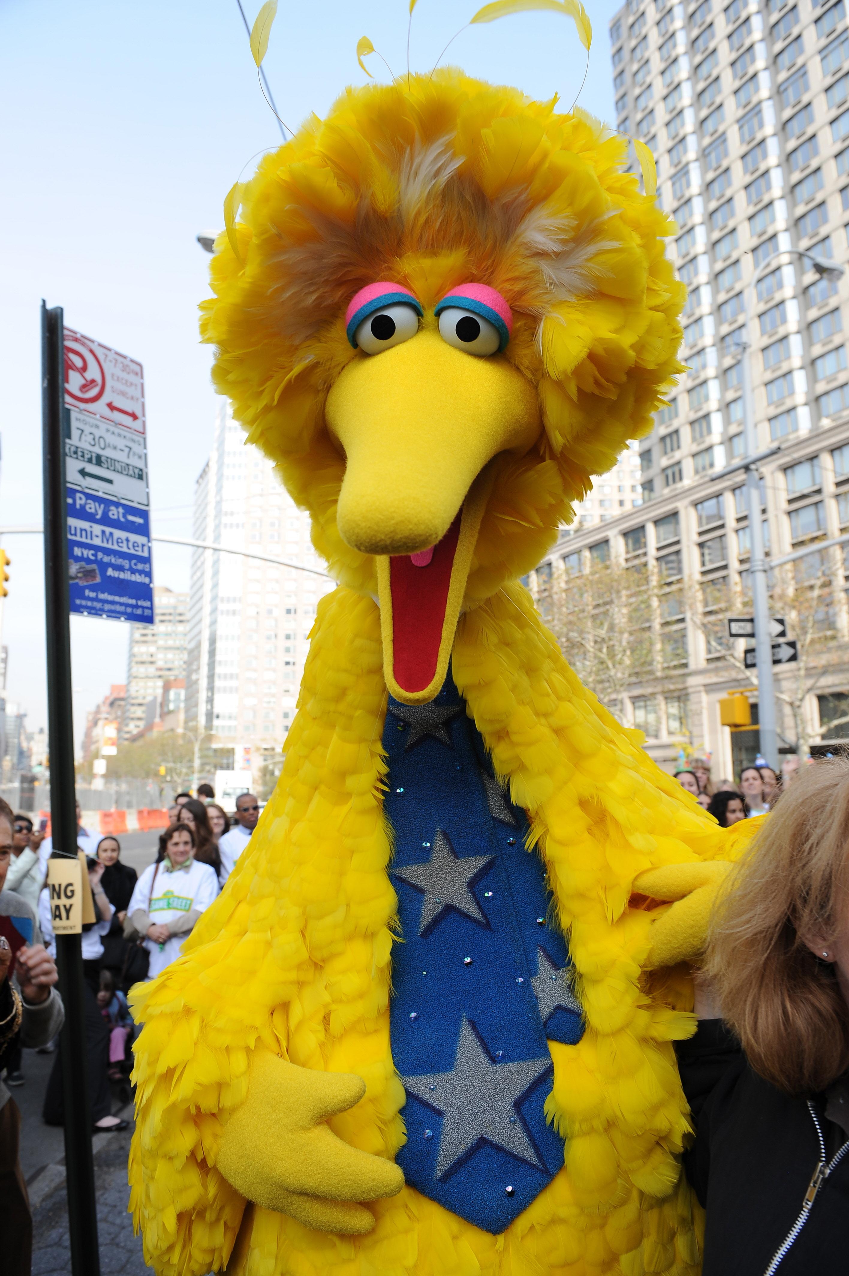 Sesame Street's Big Bird character in New York on Nov. 9, 2009.