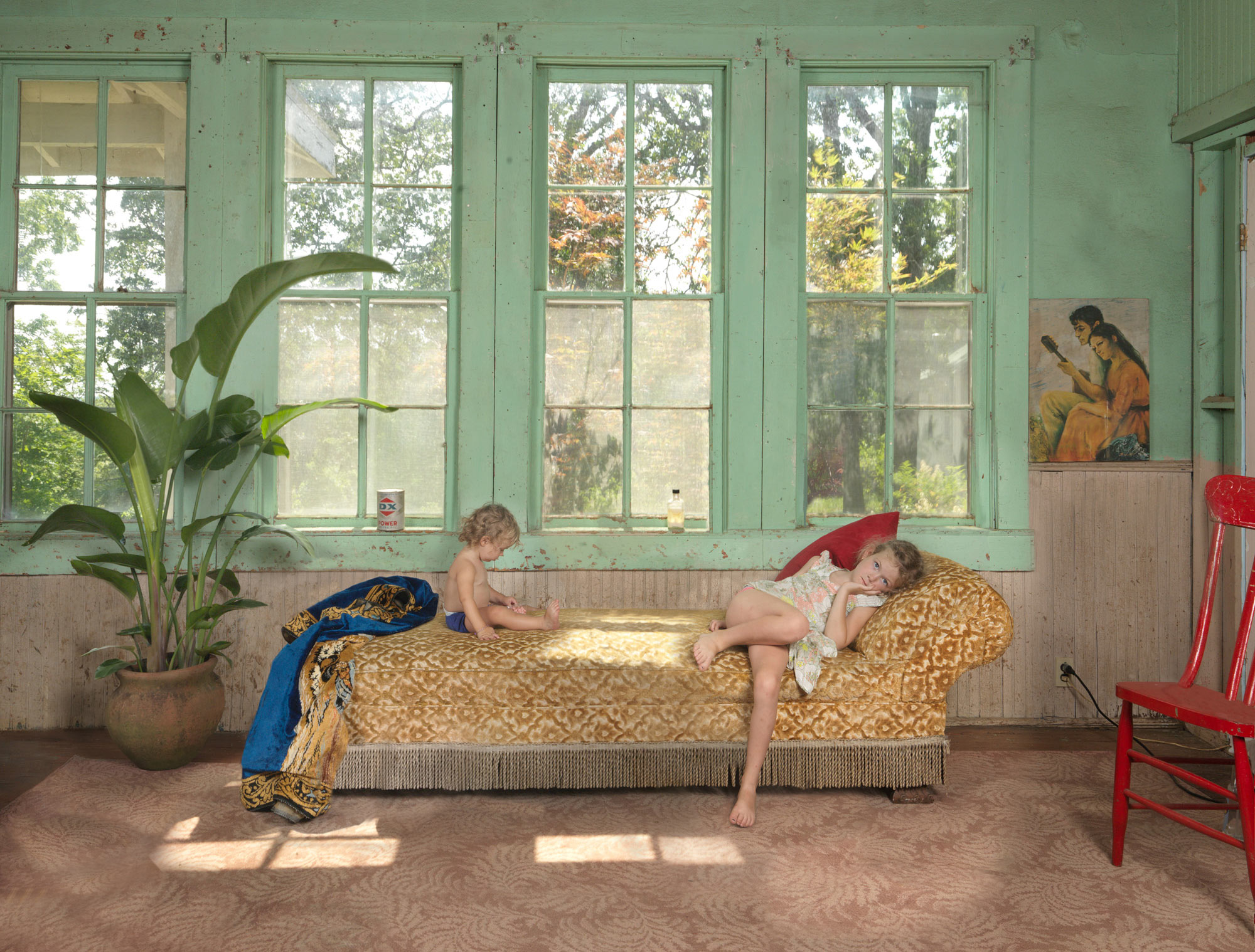 From the series Homegrown