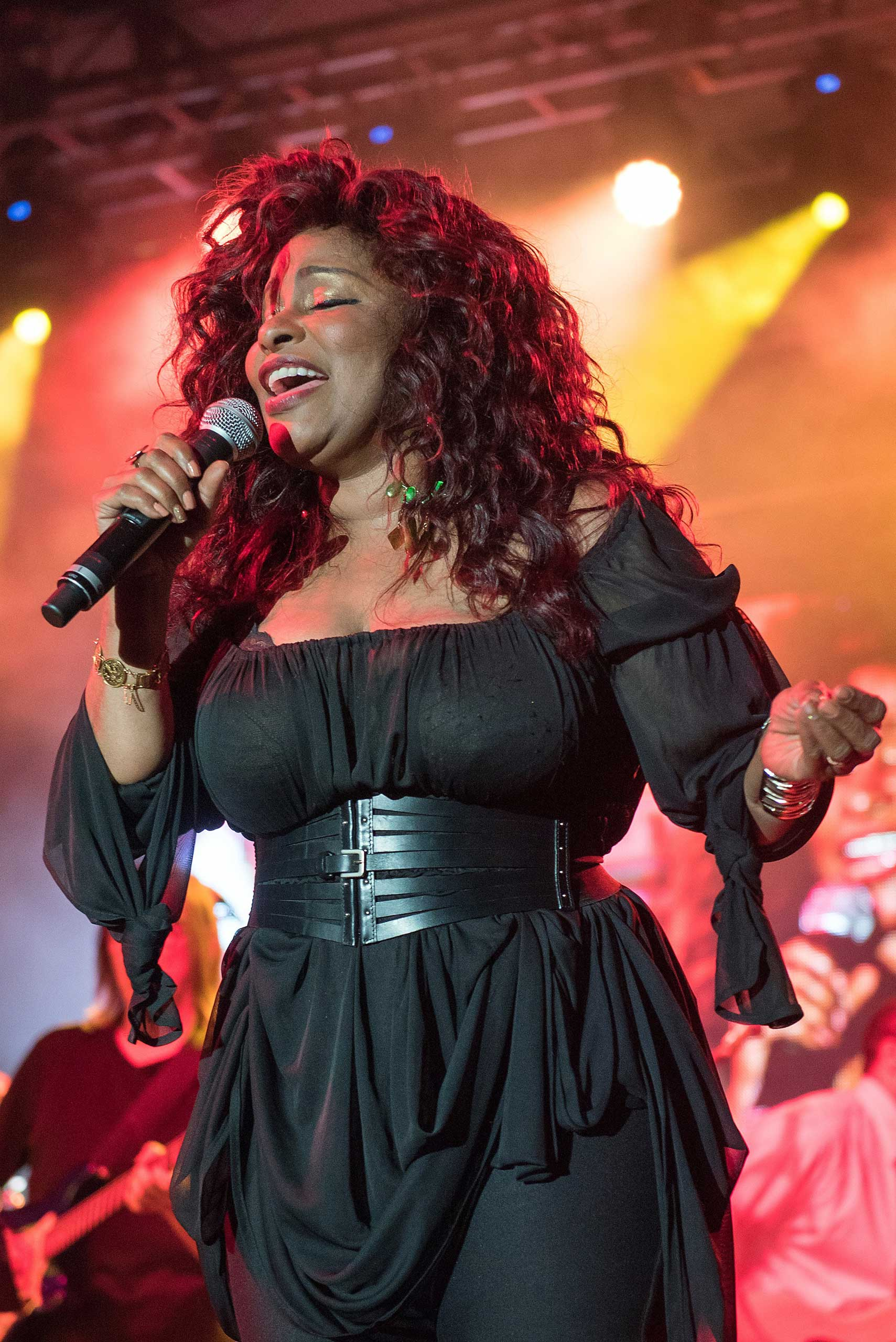 Chaka Khan performs during day two of the 2015 FOLD Festival at Martha Clara Vineyards on August 5, 2015 in Riverhead, New York.
