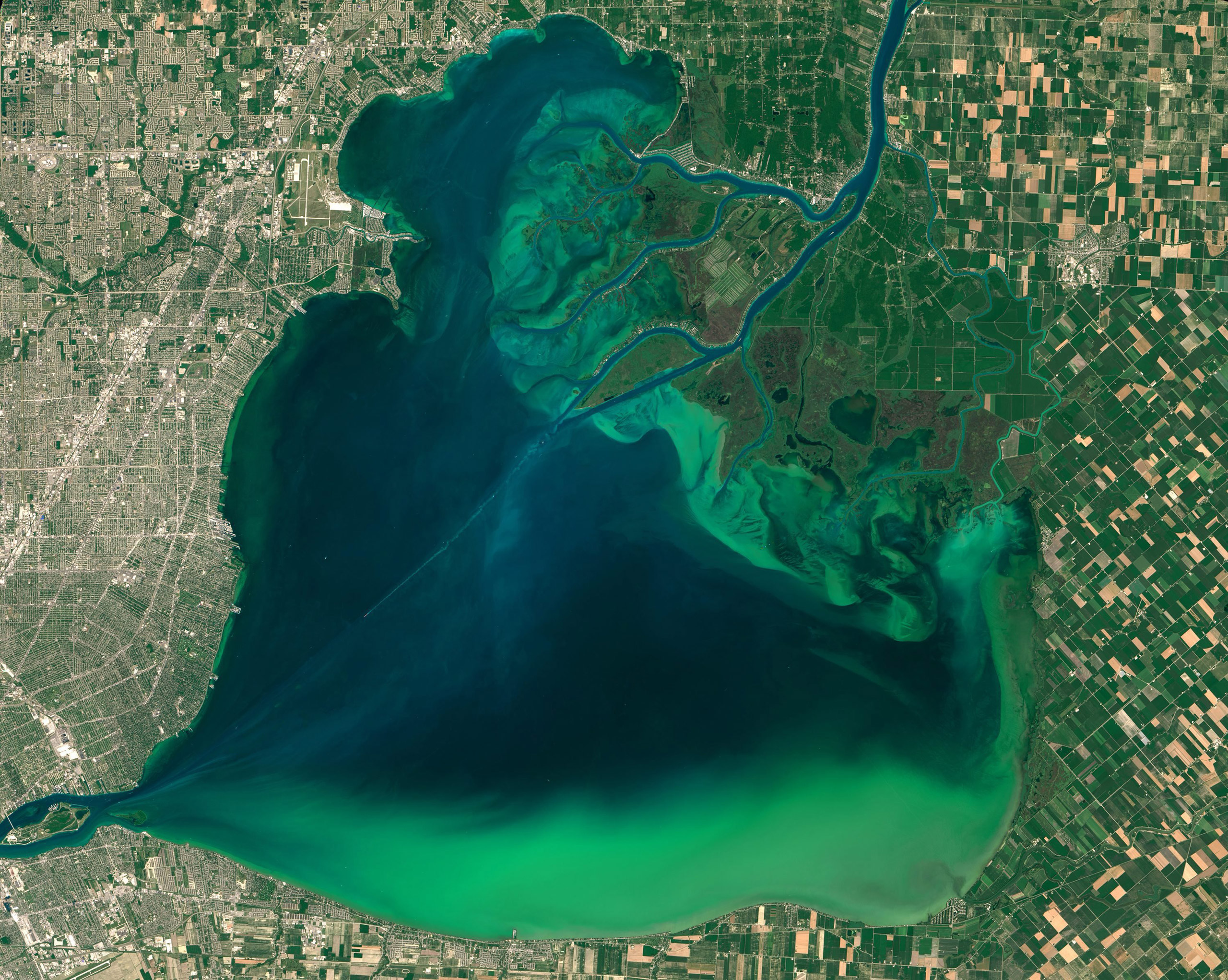 A satellite image of algal blooms around the Great Lakes, visible as swirls of green in this image of Lake St. Clair and in western Lake Erie, taken on July 28, 2015 and released on Aug. 4, 2015.