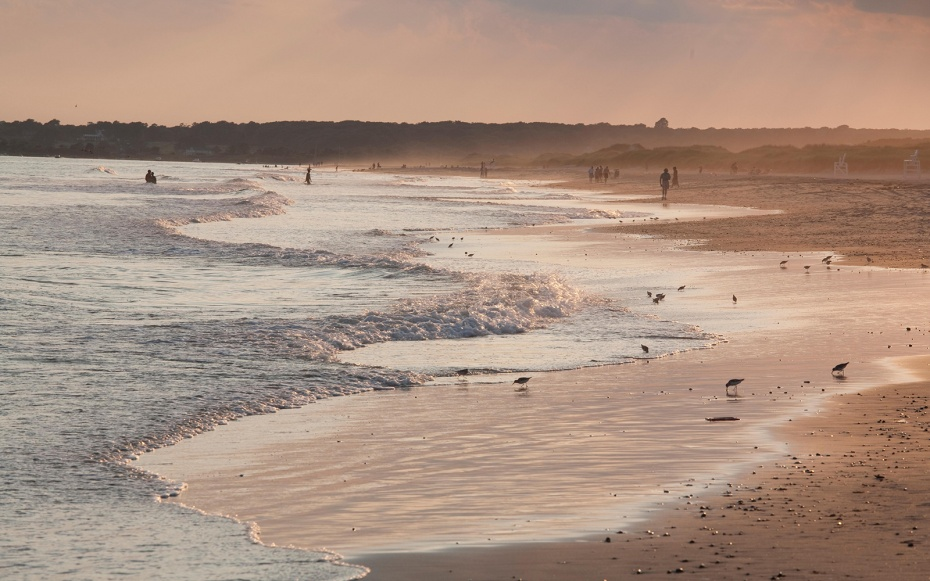 massachusetts-beach-horseneck