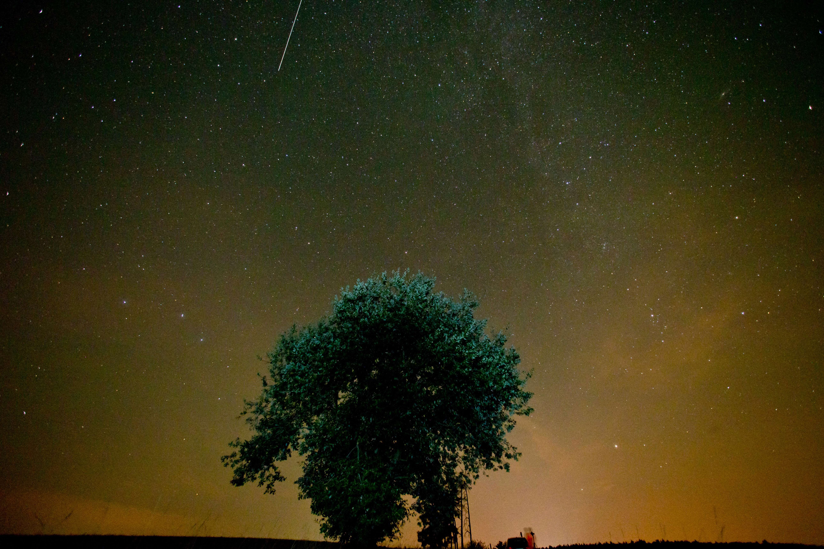 The Perseid meteor shower above Muenchsteinach, Germany on Aug. 13, 2015.