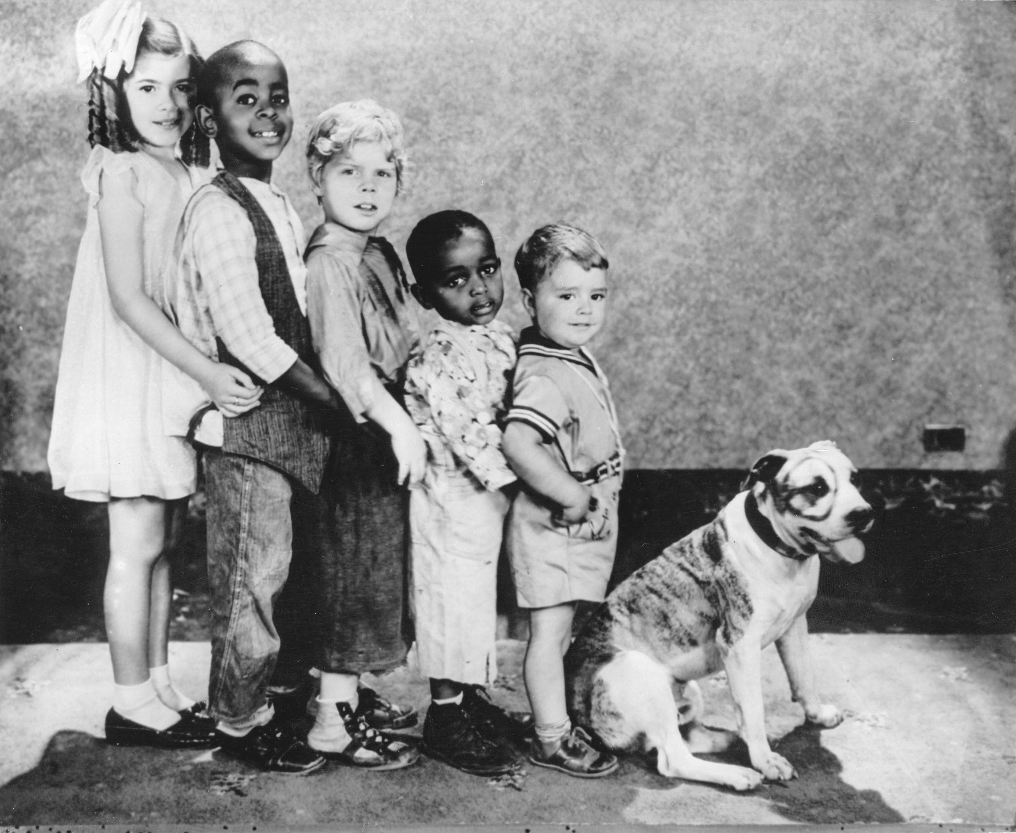 Petey the dog from  Little Rascals.