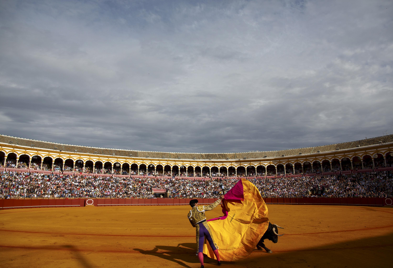 Spanish matador Rivera Ordonez  Paquirri  performs a pass to a bull during a bullfight at The Maestranza bullring in Seville, Spain April 24, 2015