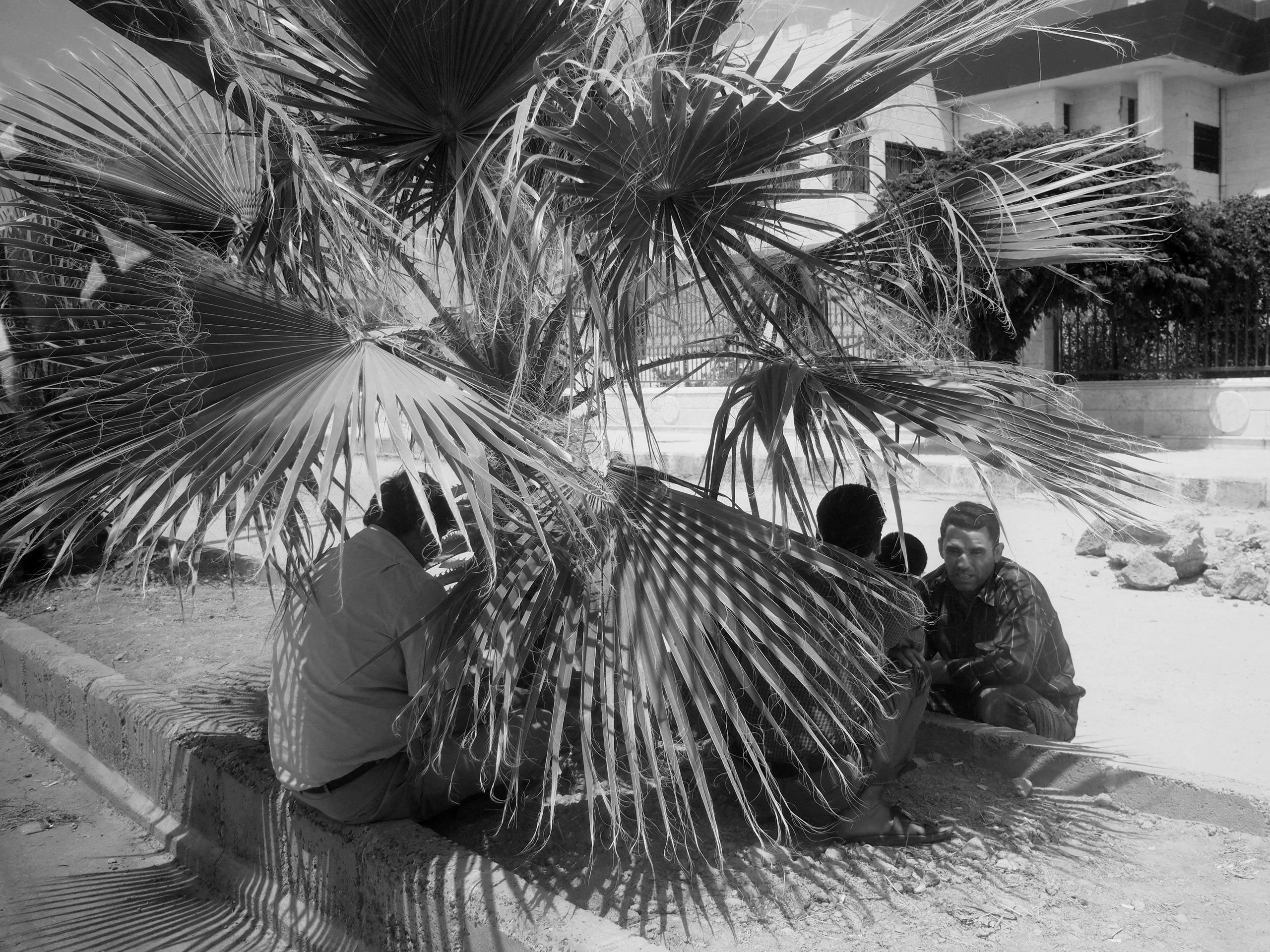 Men seek shade under a palm tree in the former Islamic State stronghold of Tal Abyad, re-captured by the Kurdish YPG militia in June of this year. Tal Abyad, Syria. Aug. 8, 2015.