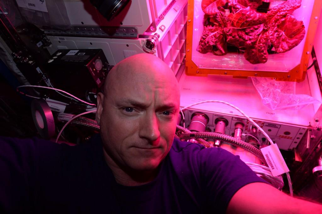 Tomorrow we'll eat the anticipated veggie harvest on @space_station! But first, lettuce take a #selfie. #YearInSpace  - via Twitter on Aug. 9, 2015