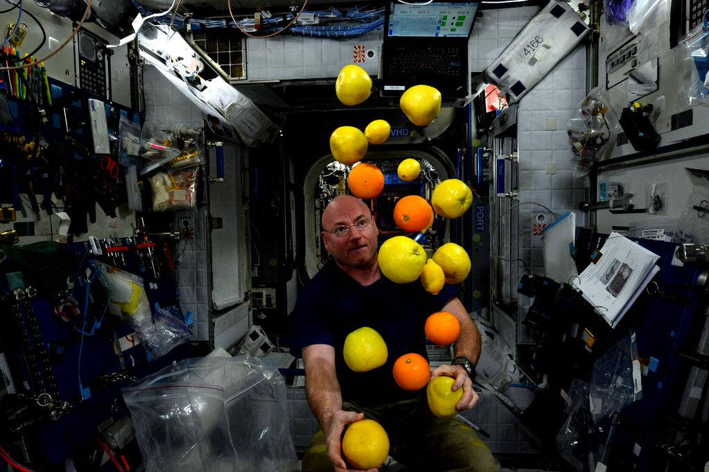#TransformationTuesday Enjoying the fruits of labor today, literally. #YearInSpace  - via Twitter on Aug. 25, 2015