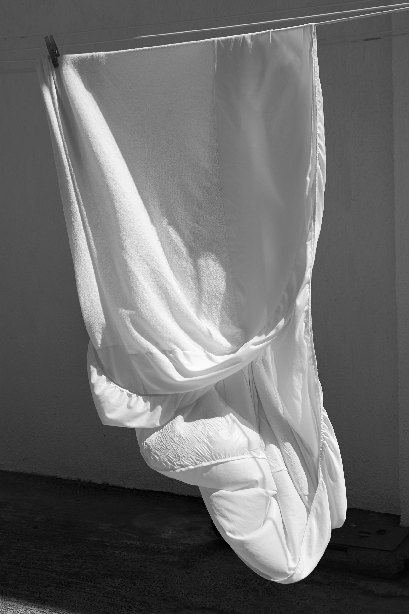 Sheet, from the series  Larvae  2014.