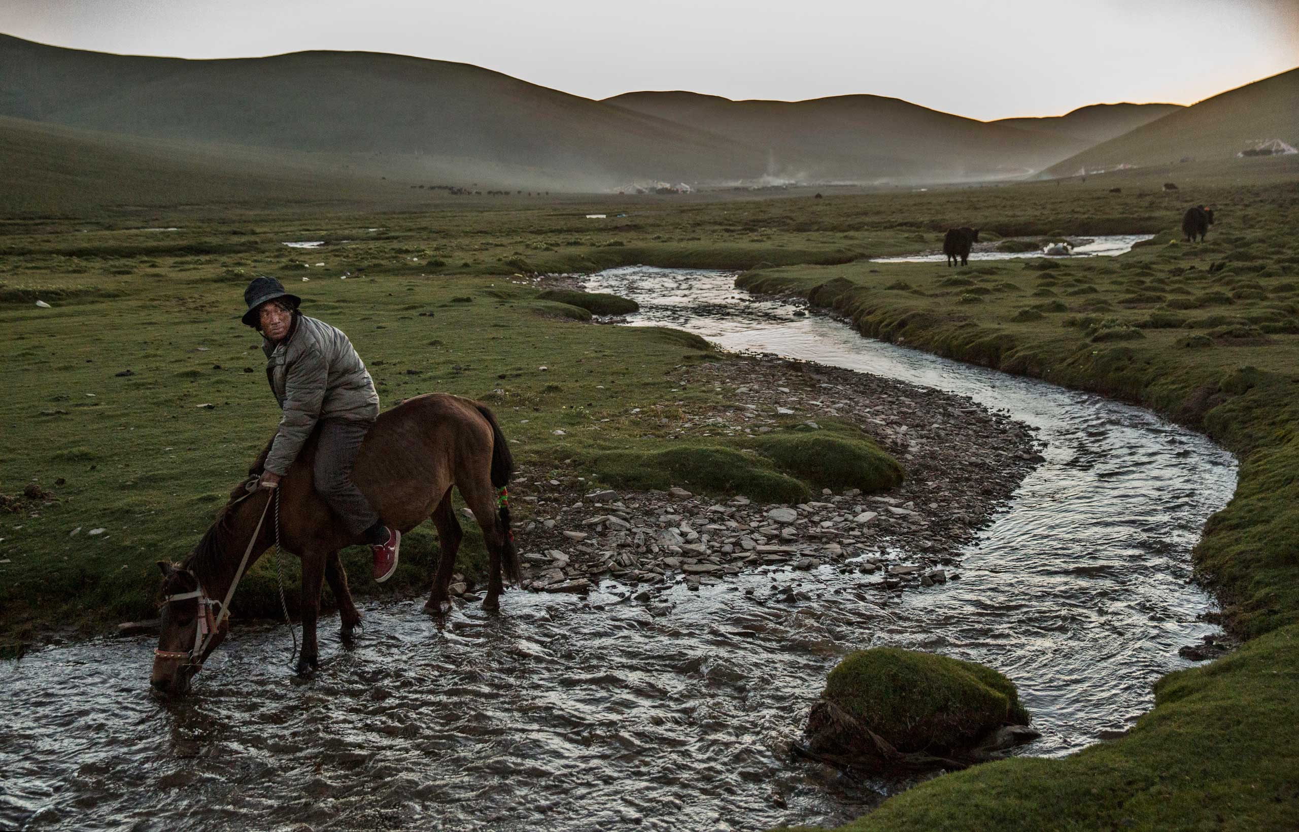 A ethnic Tibetan nomad waters his horse while herding at his summer grazing area on the Tibetan Plateau in Yushu County, on July 24, 2015.