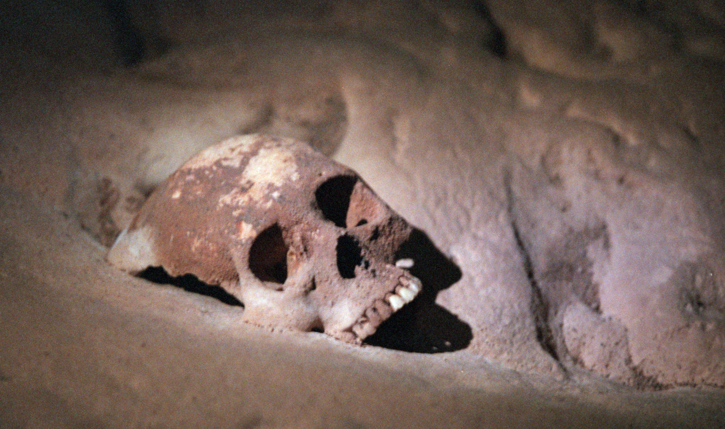 BELIZE---12/01----Deep in the cave of Actun Tunical Muknal lies skeletal remains encrusted with calc