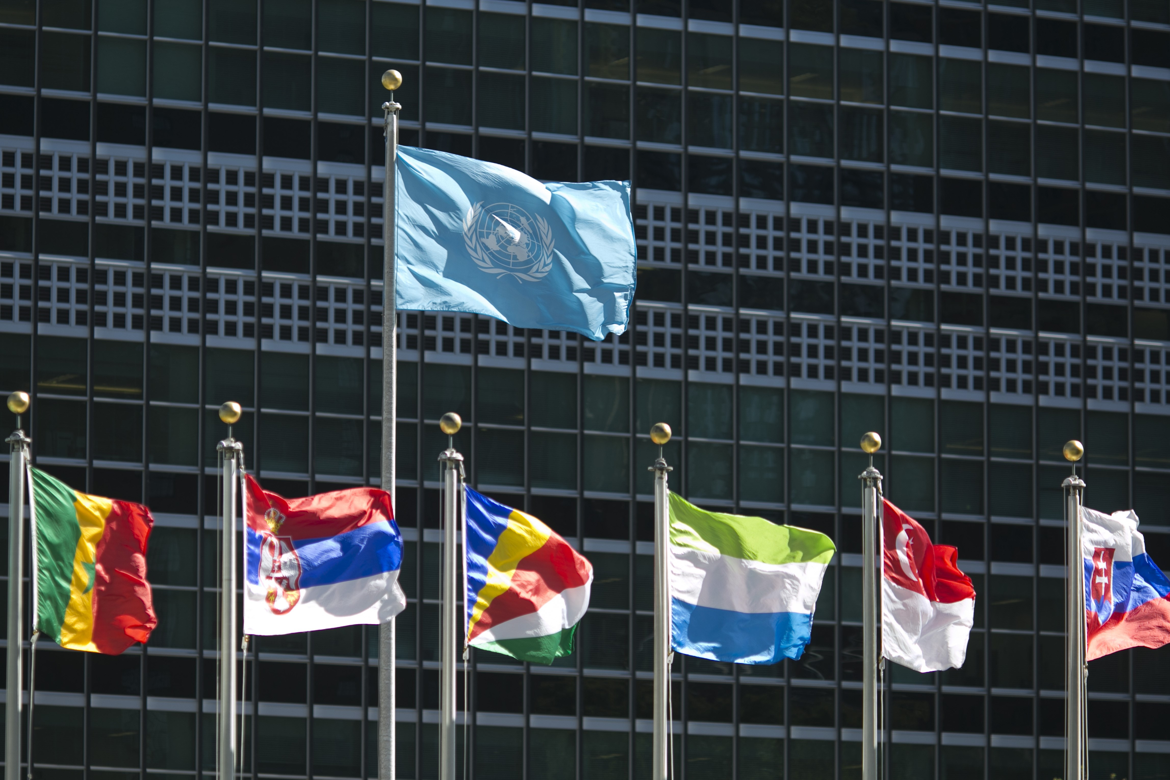 International flags fly in front of the United Nations headquarters on Sept. 24, 2015, before the start of the 70th General Assembly meeting.