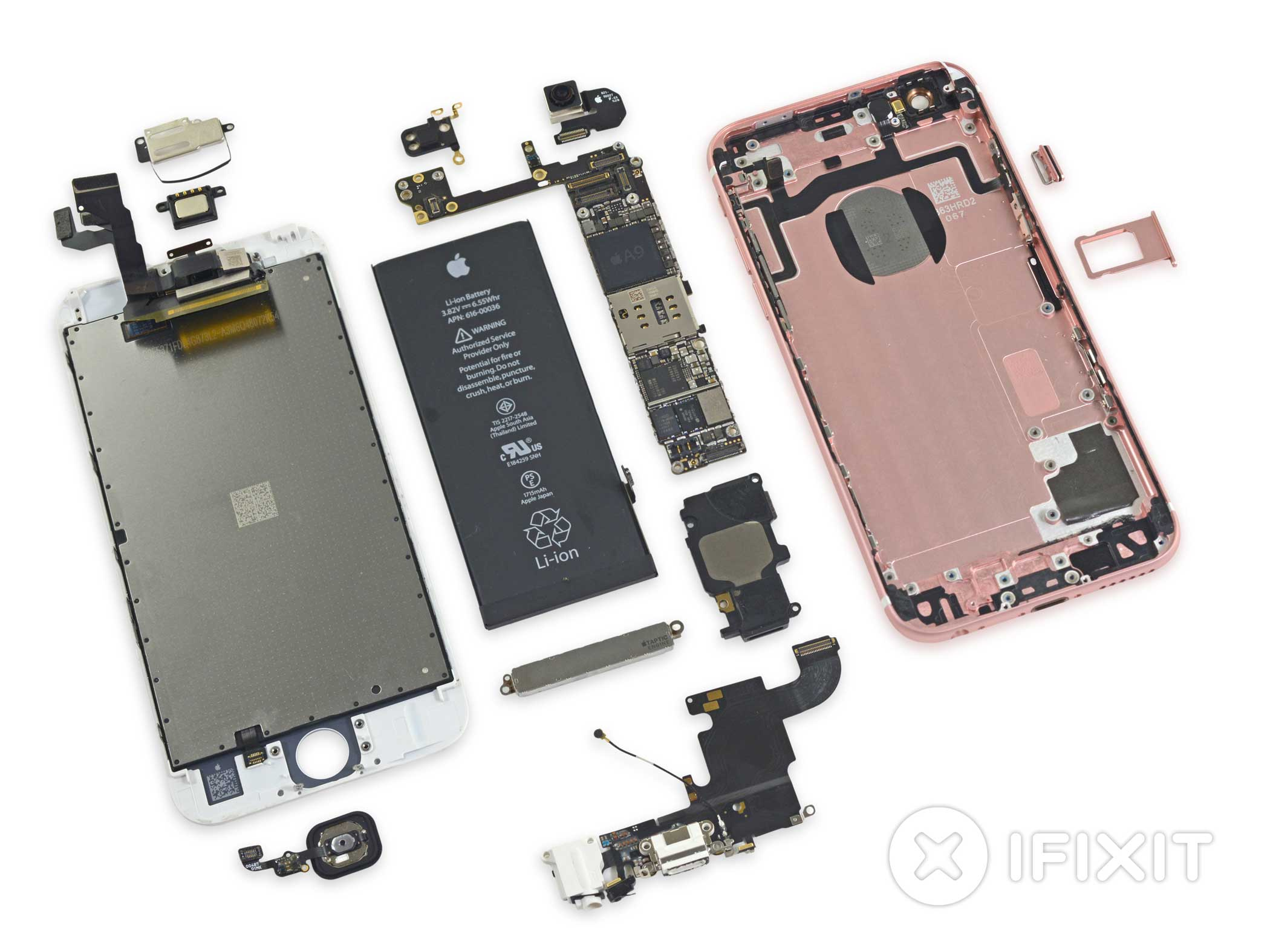 The iPhone 6s entirely dismantled.