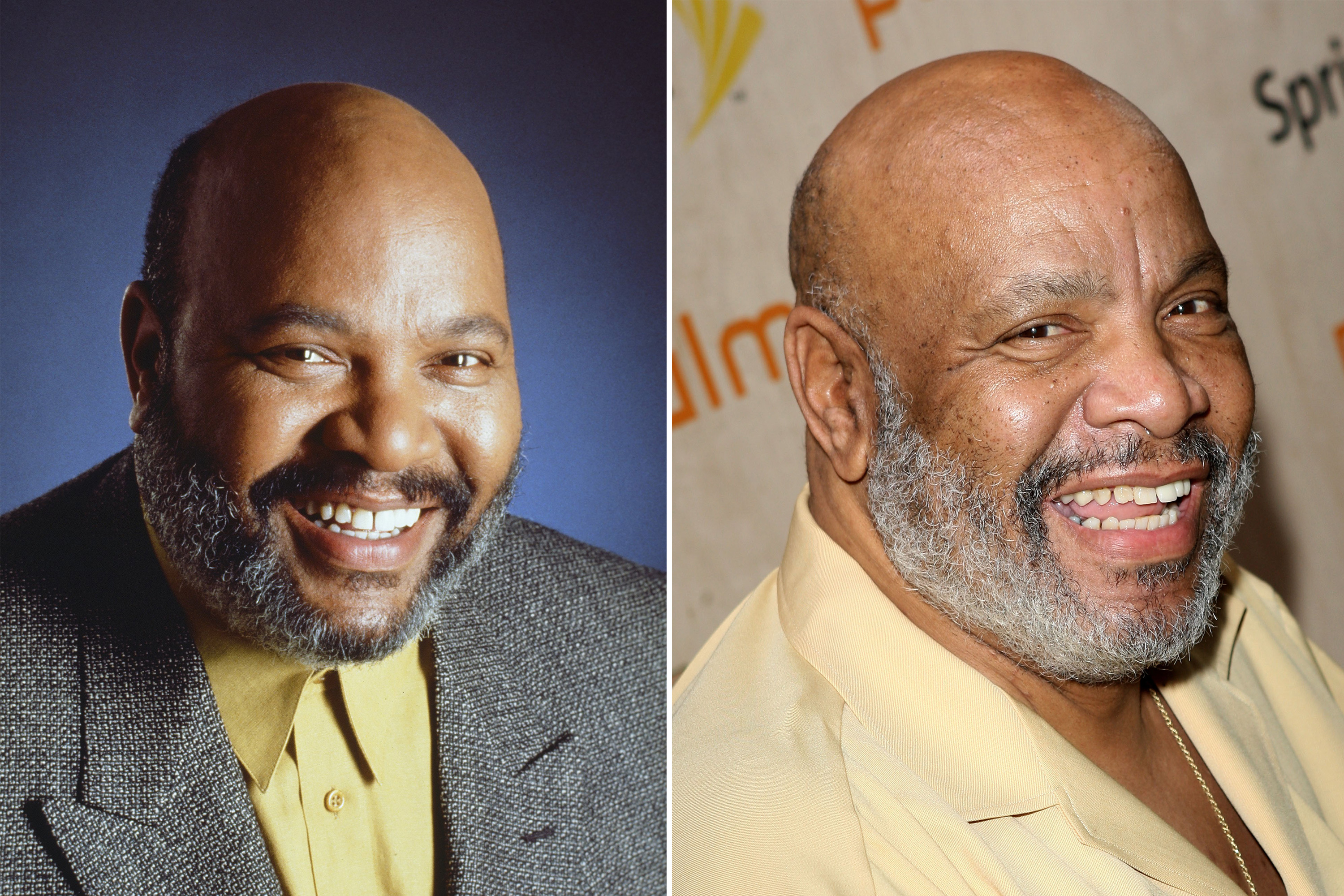 <b>James Avery</b>, who died in 2013, as <i>Philip Banks</i>