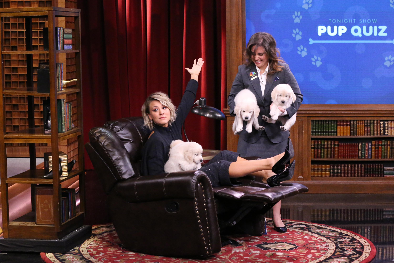 Kaley Cuoco and Jimmy Fallon: Puppy Pop Quiz