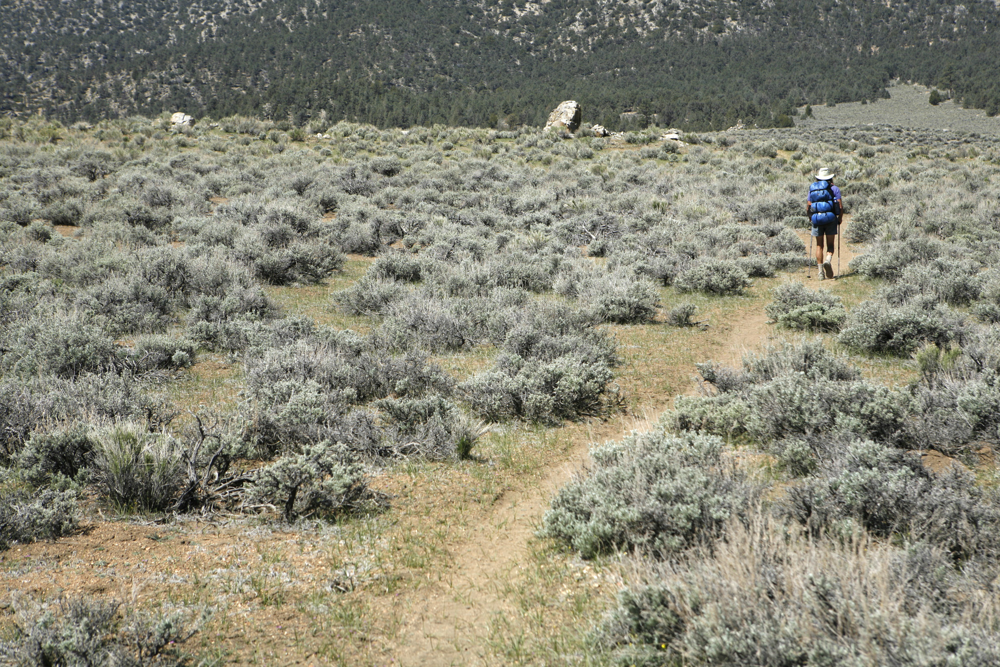 69–year–old George Woodard, a legend on the Pacific Crest Trail, hikes along the famed cross countr