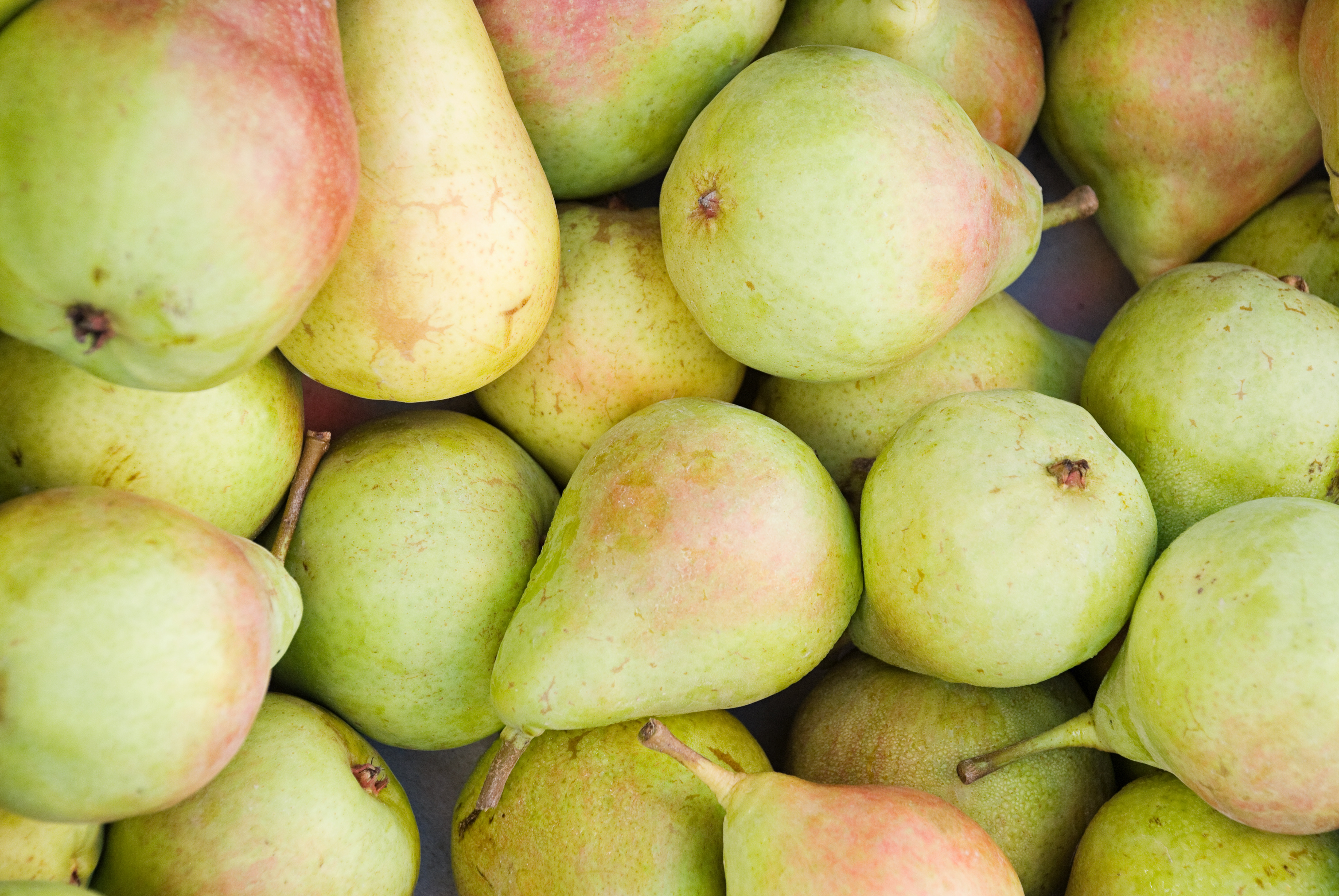 Early-season pears, which should be eaten when they're soft to the touch, really pop in flavor this time of year.