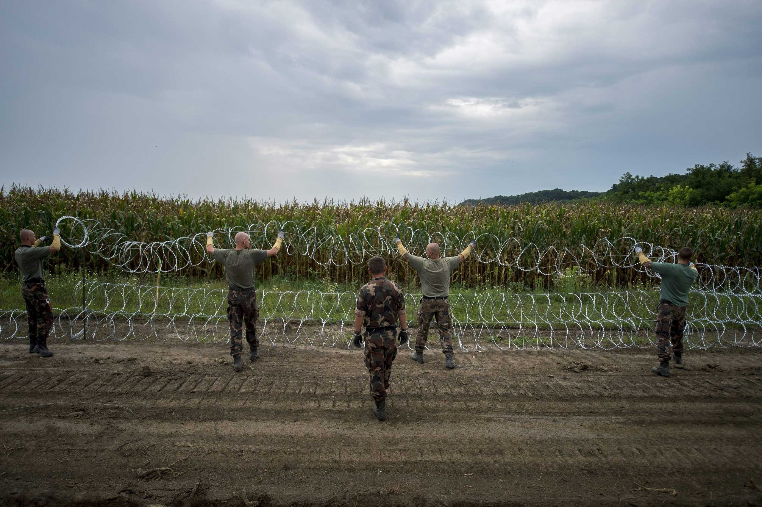 Hungarian soldiers install a wire fence at the border between Hungary and Serbia near Hercegszanto, 115 miles southeast from Budapest, on Aug. 25,  2015.