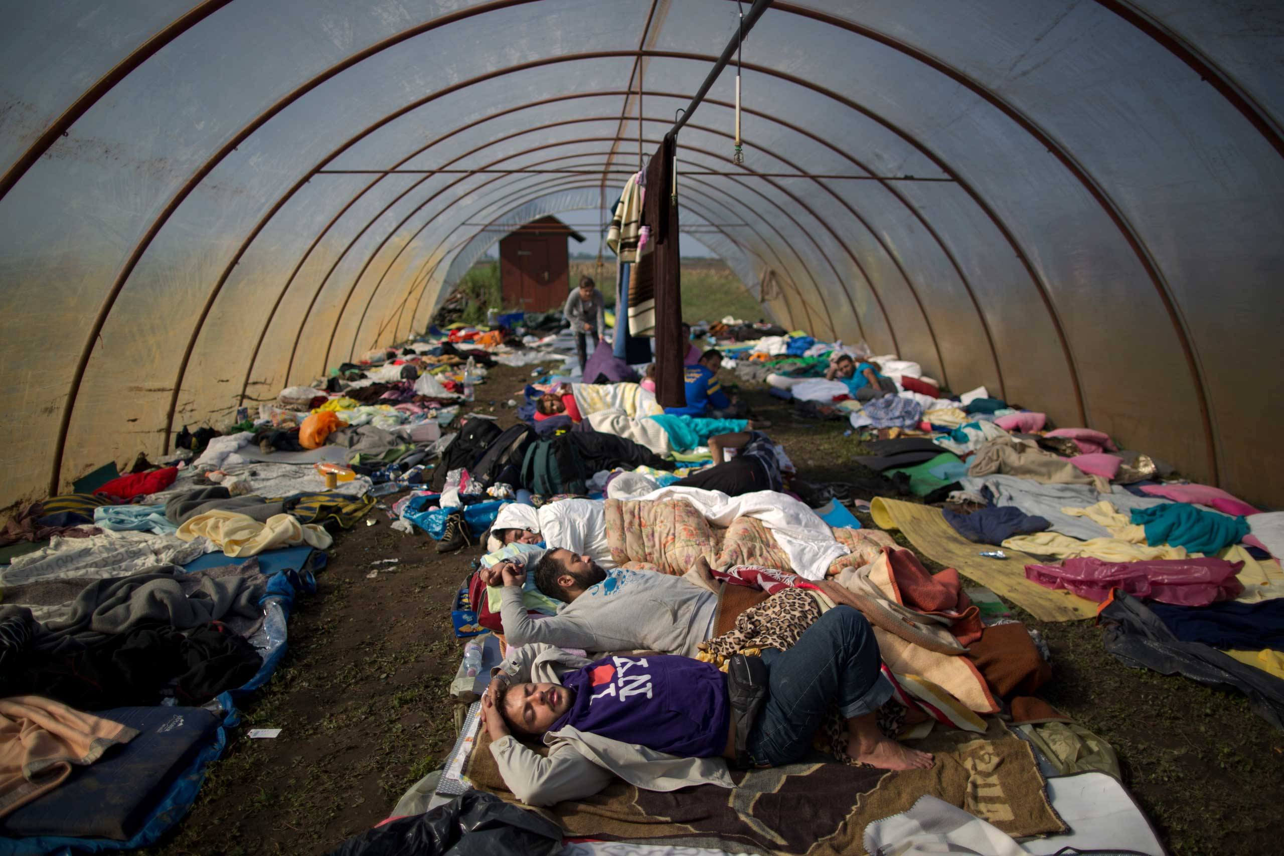 Syrian people sleep inside a greenhouse at a makeshift camp for asylum seekers near Roszke, southern Hungary, on Sept. 13, 2015.