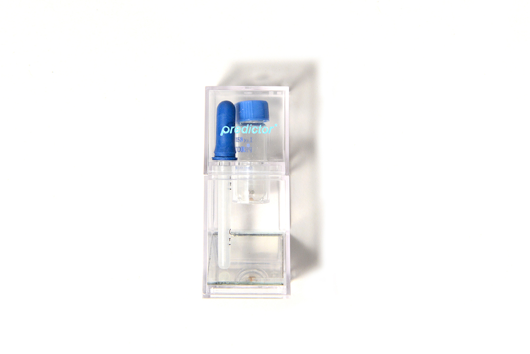 The test kit included a blue rubber dropper, a glass test vial that contained materials to detect pregnancy hormone.