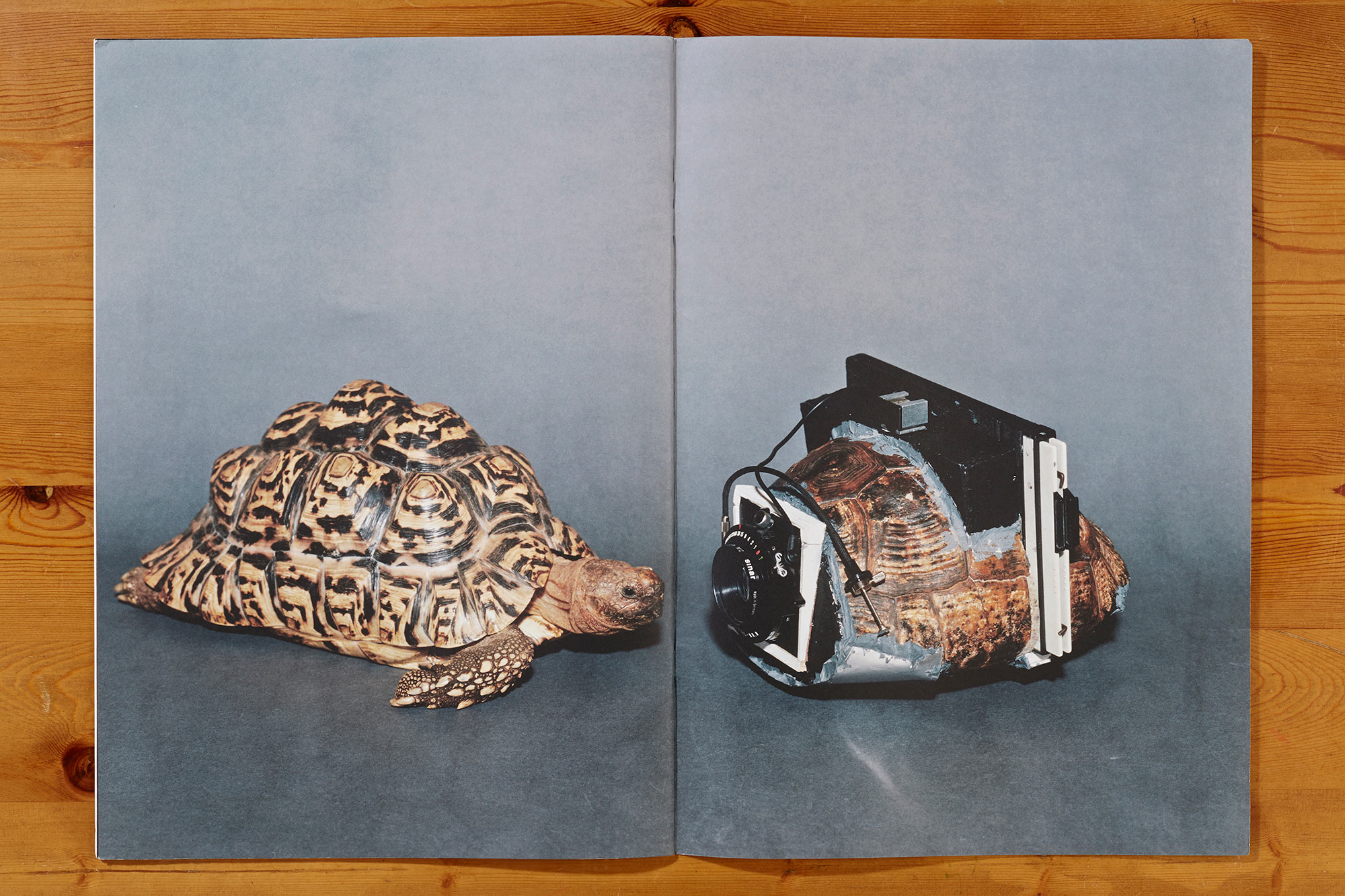 From the book  As Long As It Photographs, It Must Be a Camera  by Taiyo Onorato and Nico Krebs.