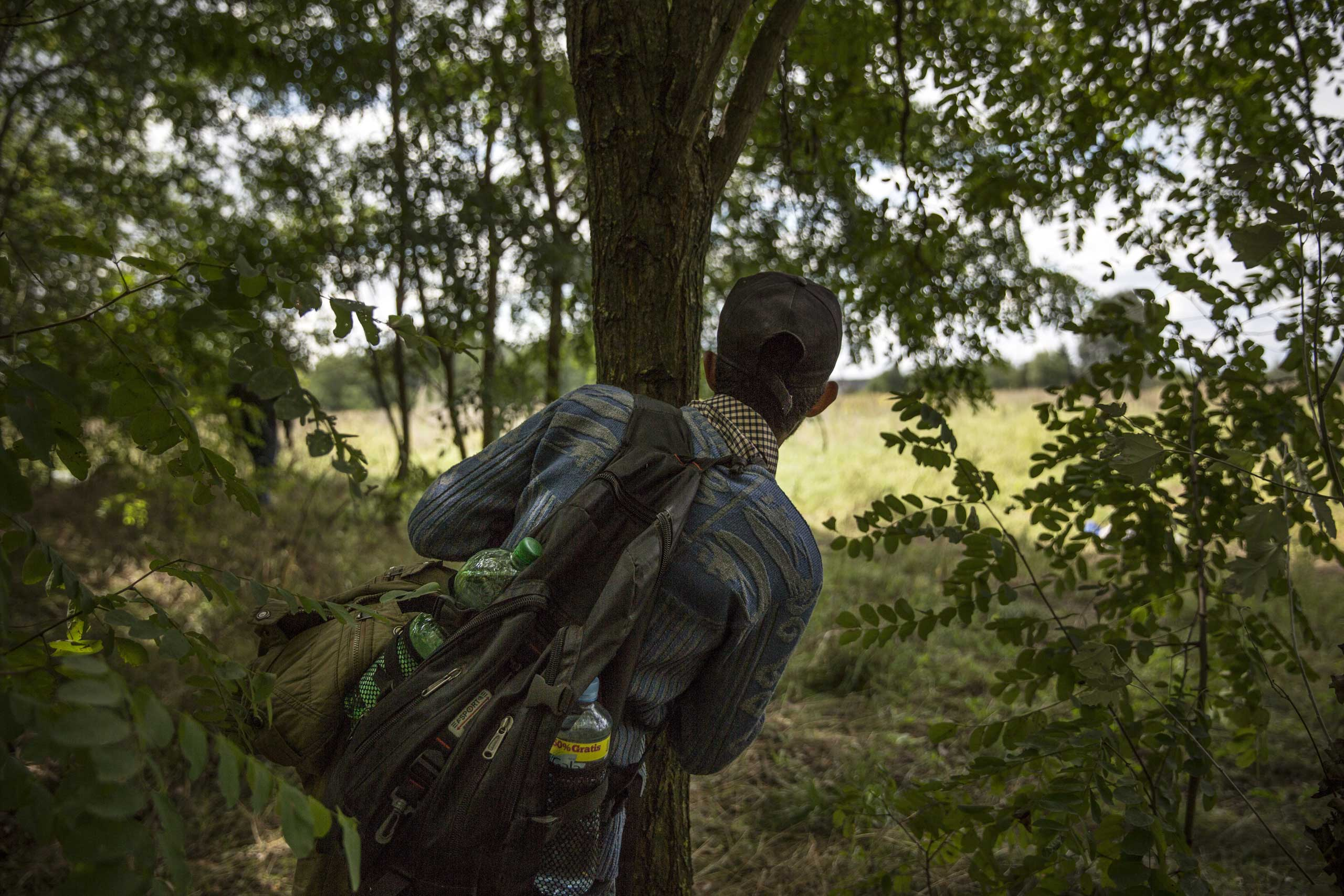 A young Syrian man from Damascus tries to evade the Hungarian police by sneaking through a forest close to the Serbian border in Morahalom, Hungary, on Sept. 8, 2015.
