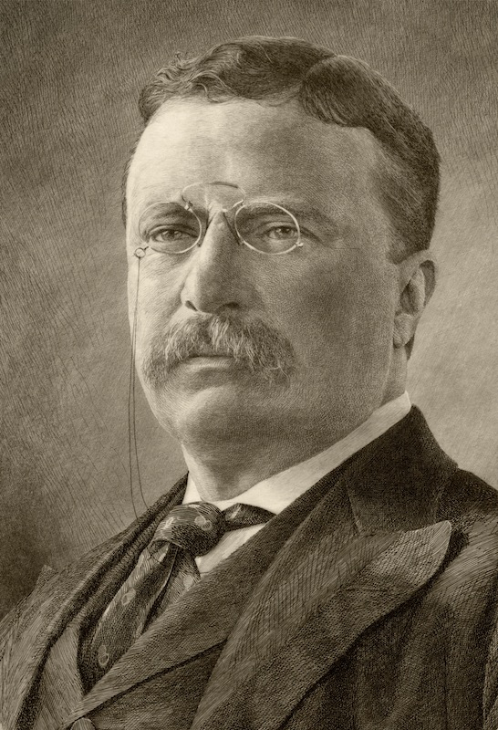 Theodore D. Roosevelt, 26th President of the United States.