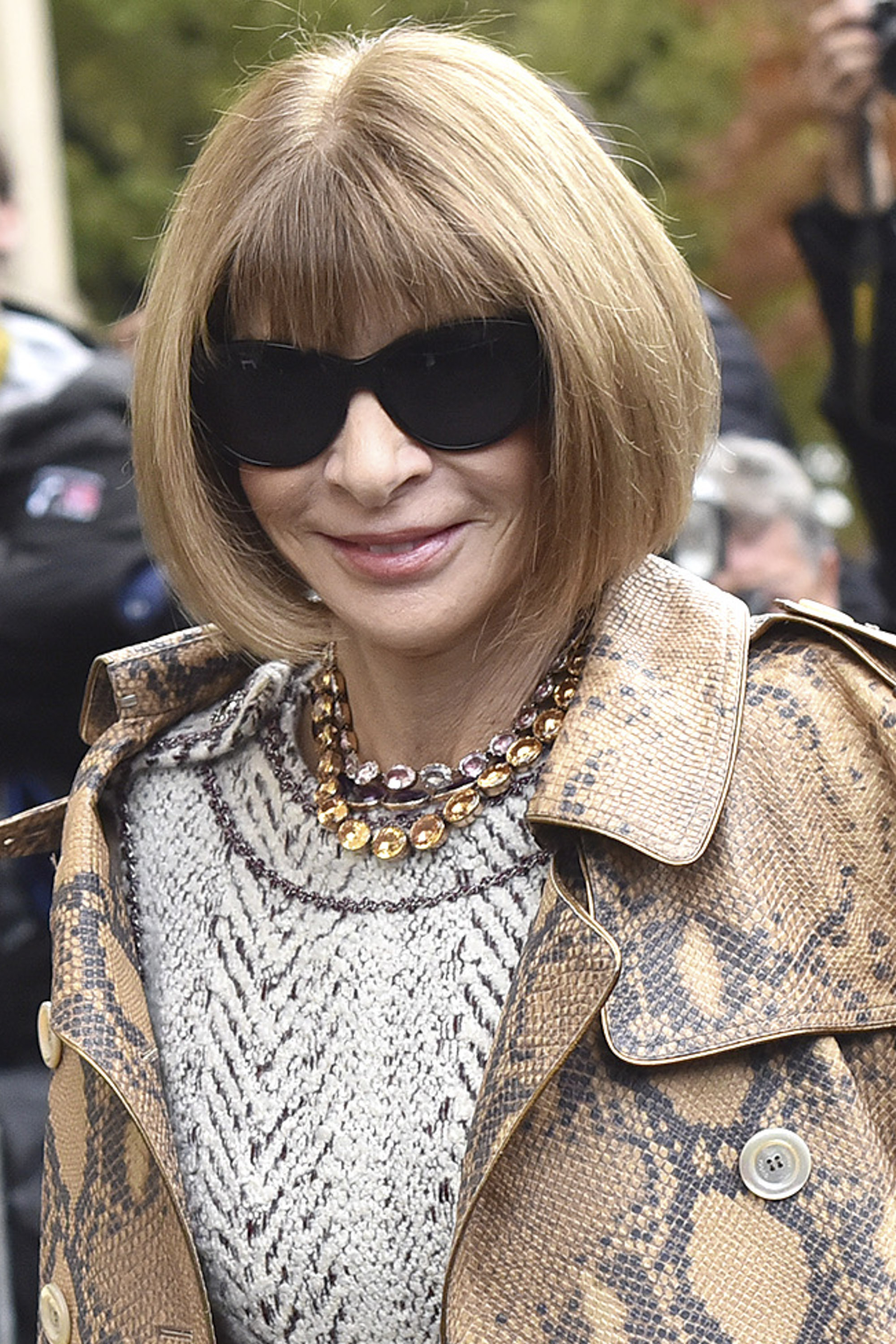 Anna Wintour at Chanel Fashion Show during the Paris Fashion Week S/S 2016 on Oct. 6, 2015.