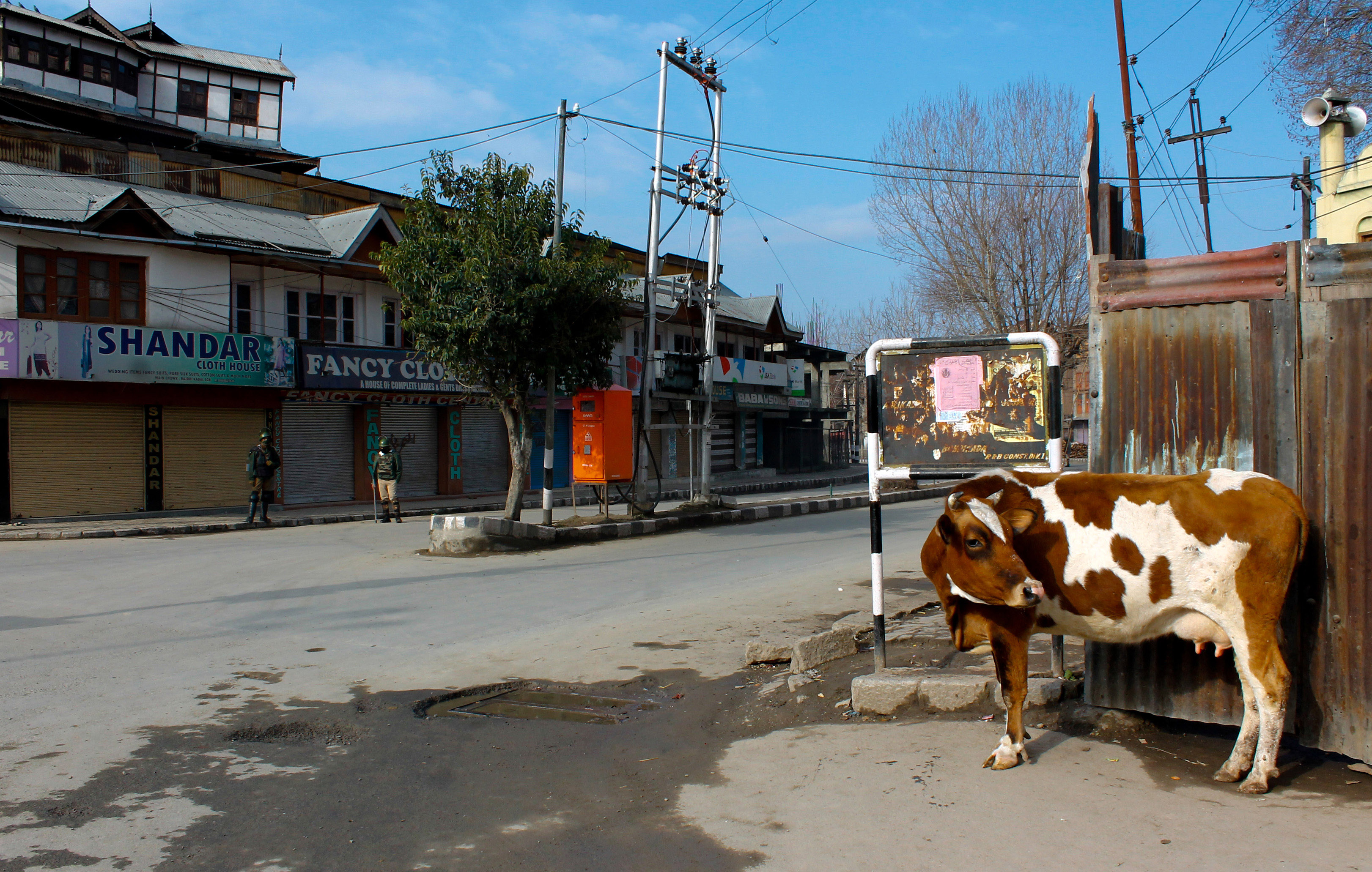 Indian paramilitary soldiers stand guard as a stray cow look around at the Old City during restrictions on the second death anniversary of Afzal Guru on February 09, 2015 in Srinagar, the summer capital of Indian Administered Kashmir, India.