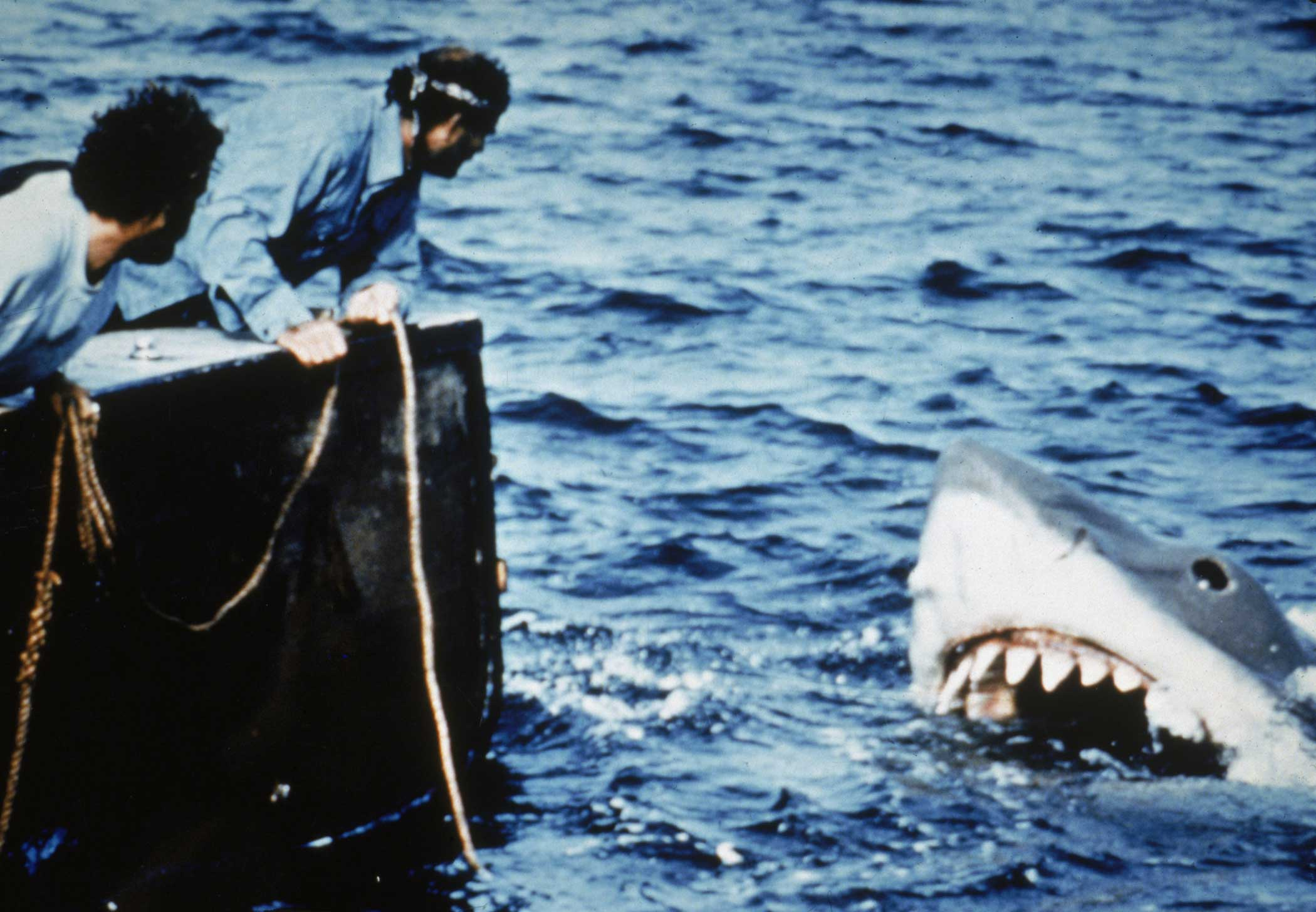 Jaws from Jaws, 1975.