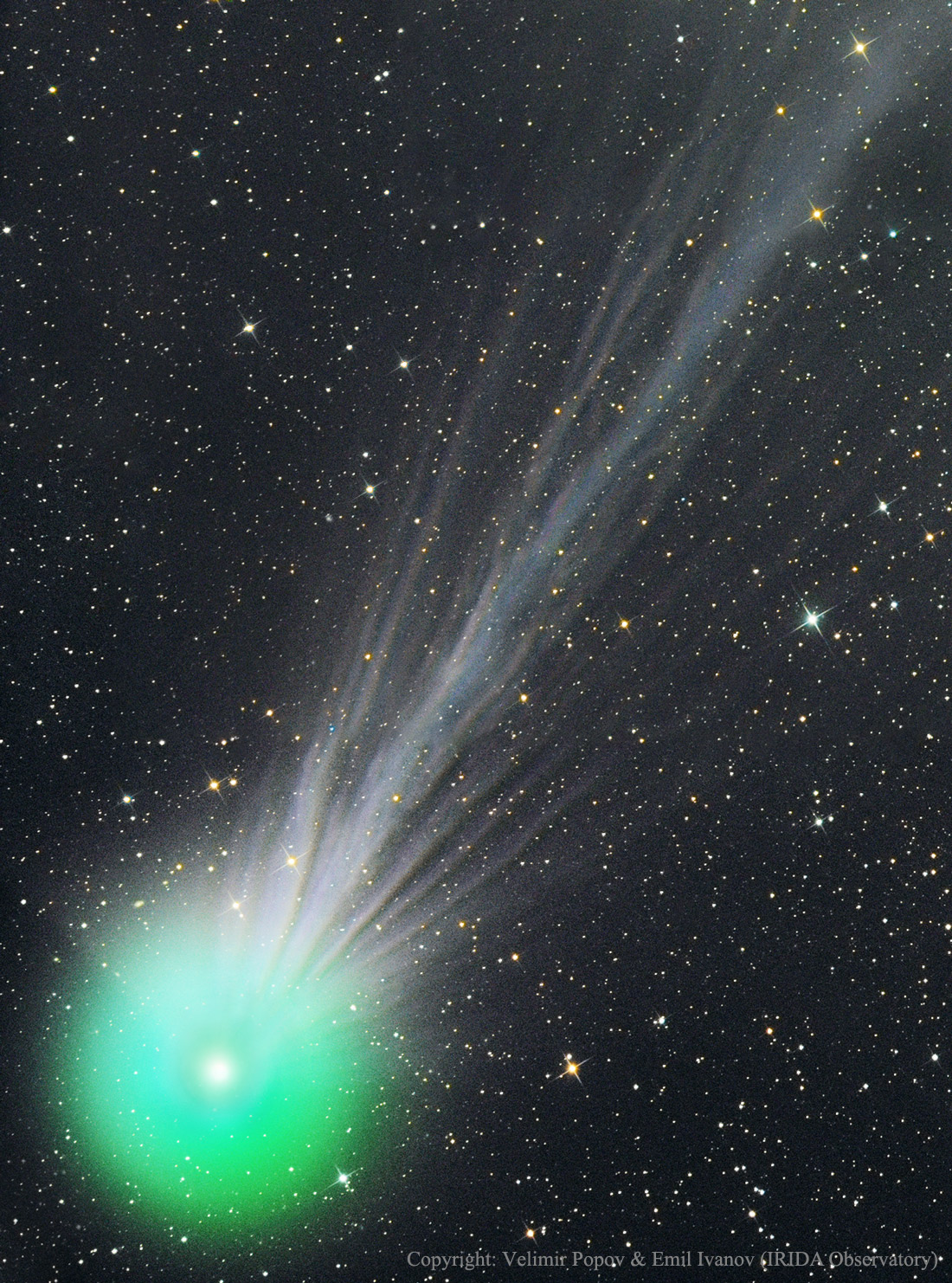 The bar is open:  Comet Lovejoy, as photographed on January 15, 2015