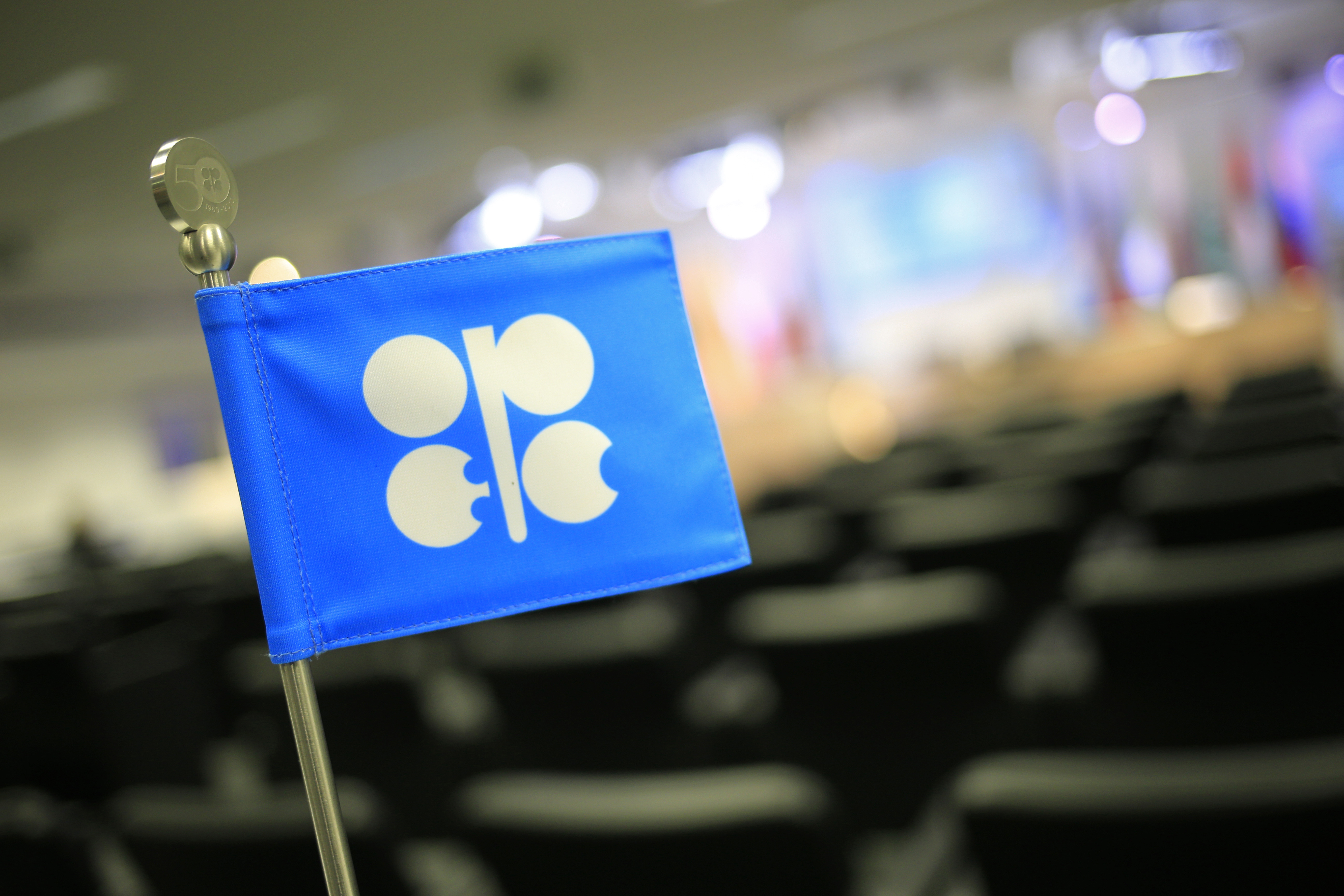 The OPEC (Organization of the Petroleum Exporting Countries) flag at the 164th OPEC meeting in Vienna on Dec. 3, 2013.