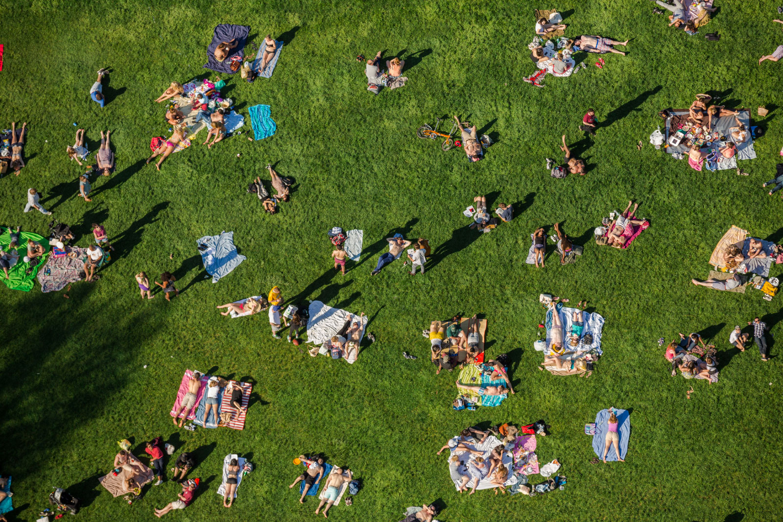 Sunbathers and picnickers in the area between the pathway that encircles Central Park's Great Lawn, on a warm afternoon of spring.