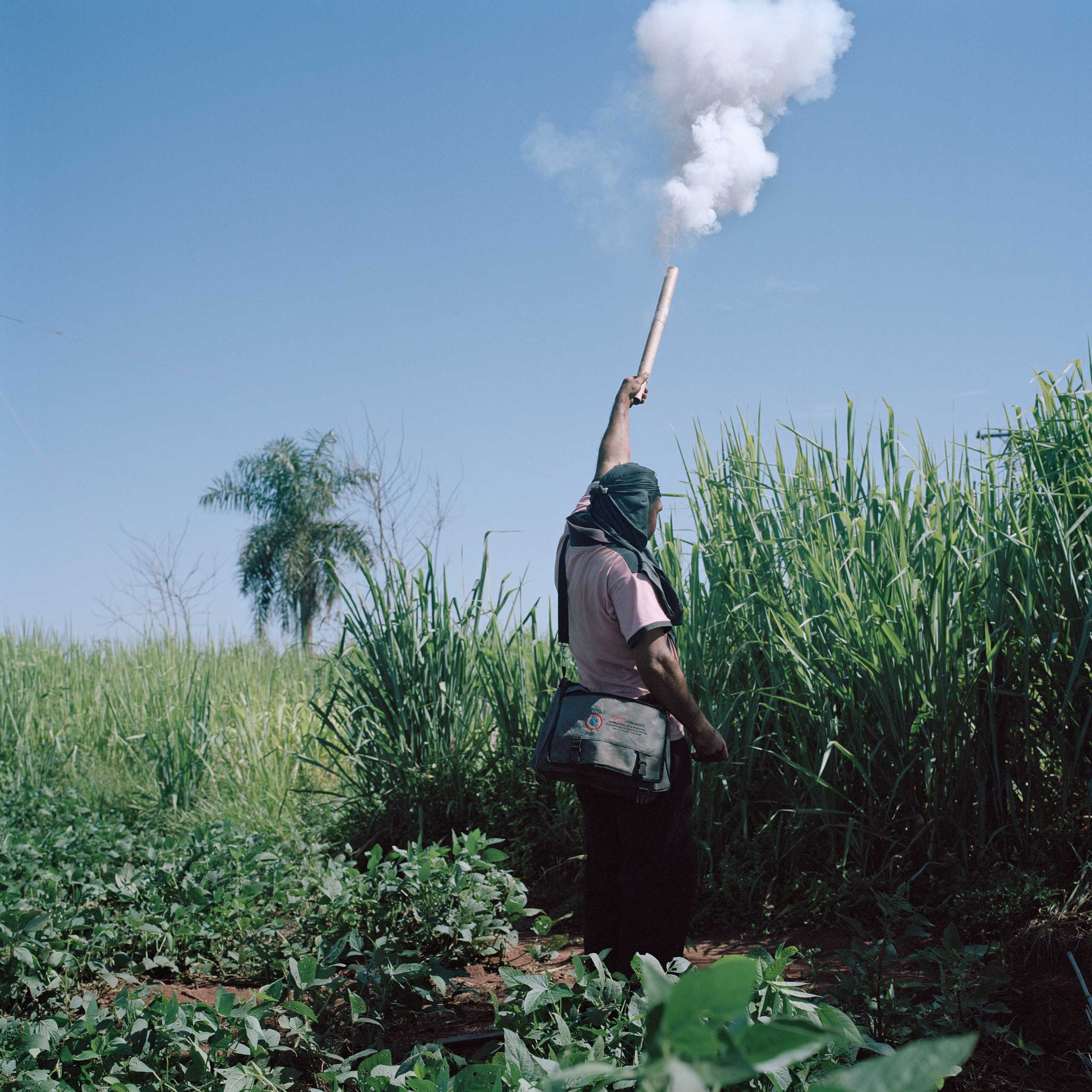 A peasant shoots a firecracker to alert people that a fumigation is happening near the community. In such situations, peasants occupy the soy field in order to stop the fumigation, which they believe to be harmful to the community's health and the environment.