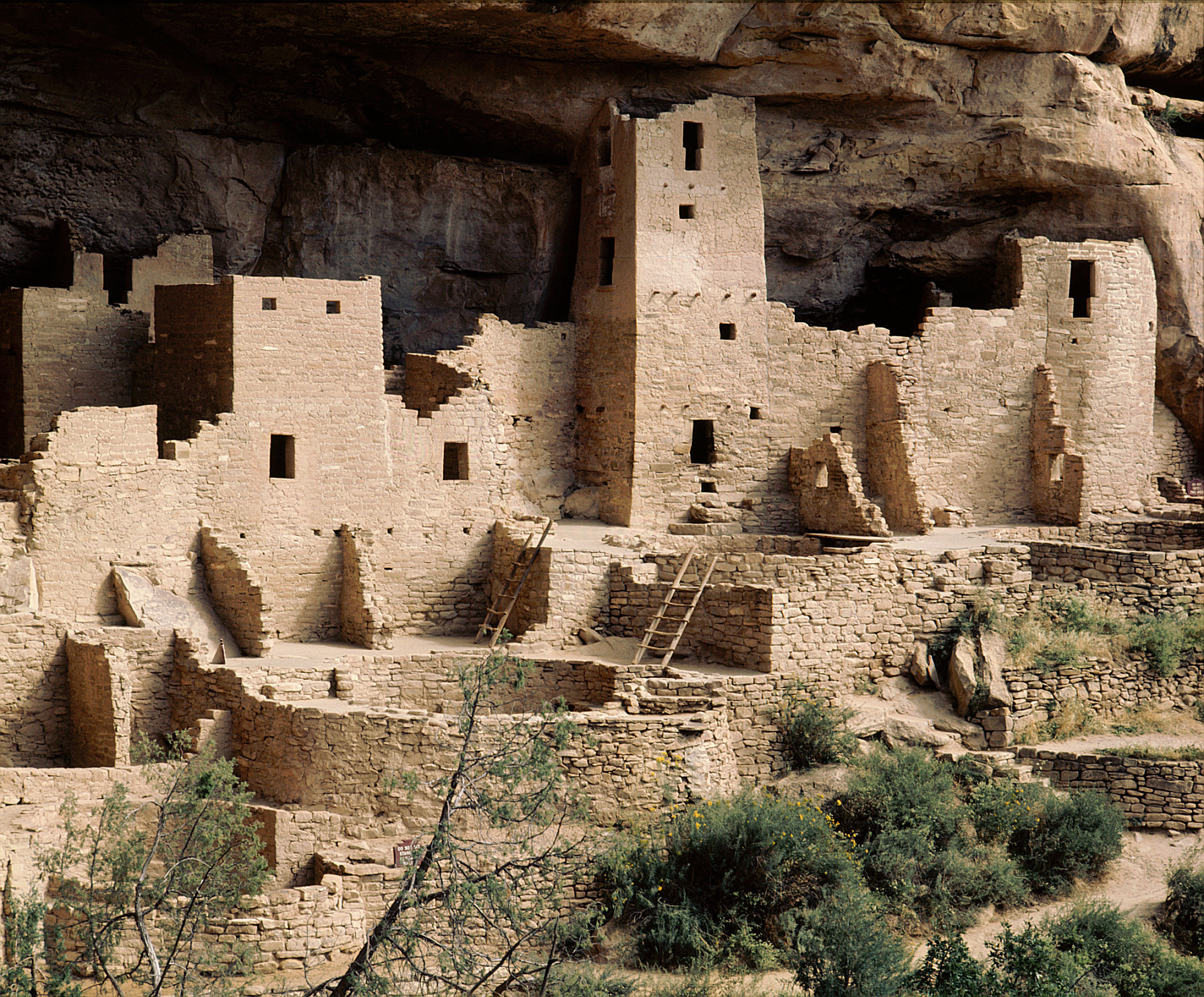 Part of the Cliff Palace at Mesa Verde in Colorado, showing dwellings and kivas. The kivas may be distinguished by their circular shape.