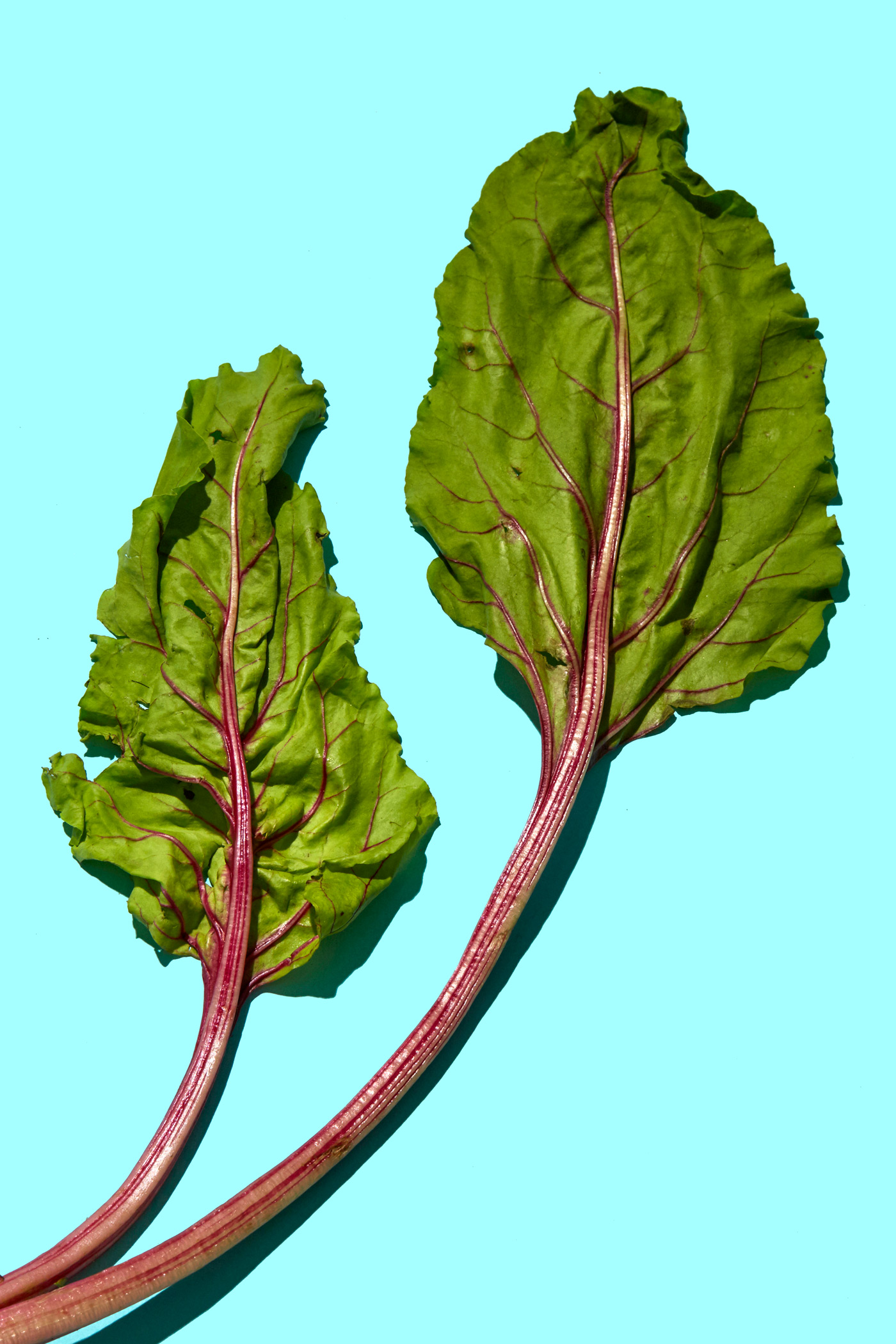 healthiest foods, health food, diet, nutrition, time.com stock, beet greens