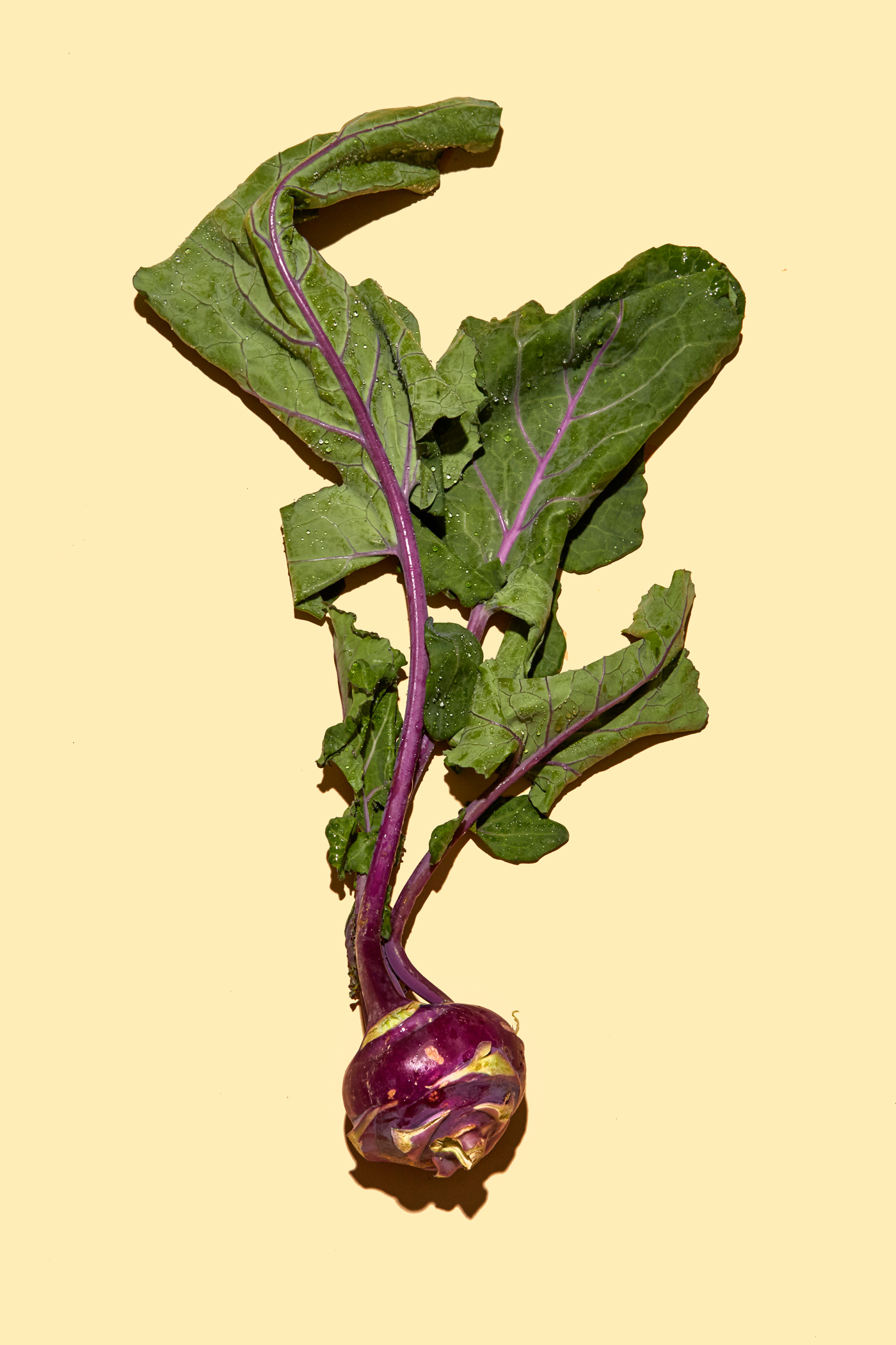 healthiest foods, health food, diet, nutrition, time.com stock, kohlrabi