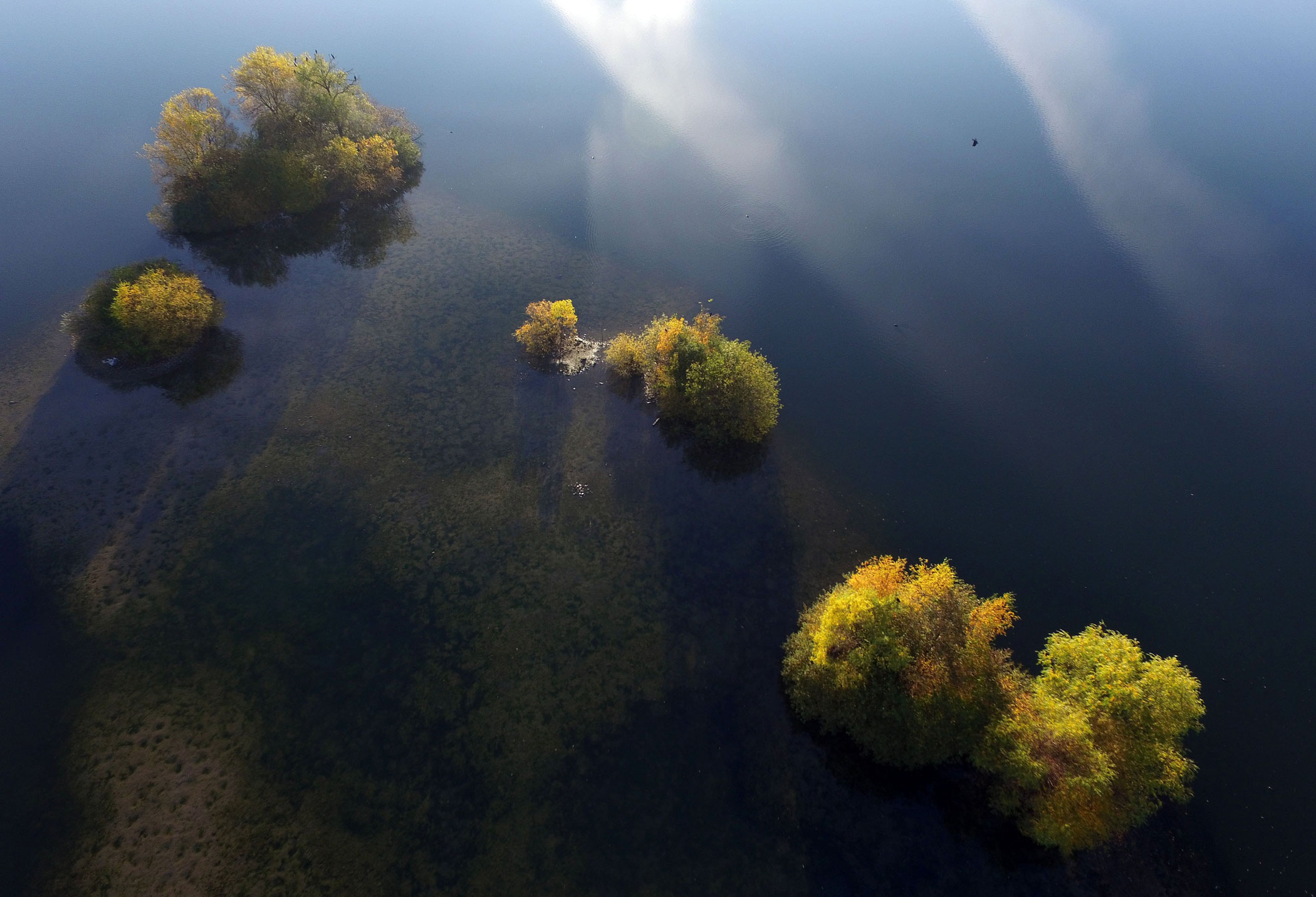 Autumn trees stand on small islands in a quarry pond in Cologne, Germany on Nov. 2, 2015.