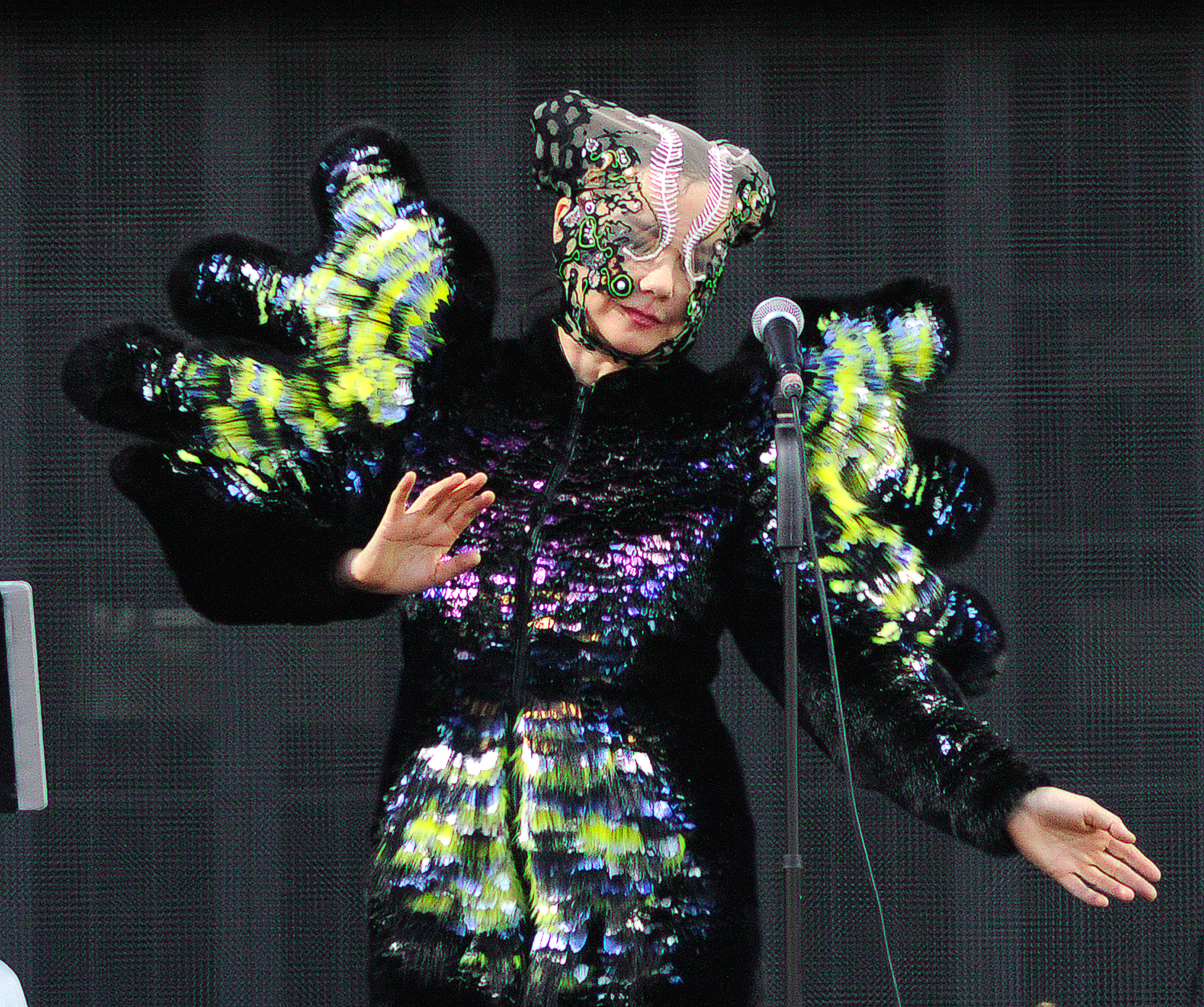 Björk performs during the 2015 Governors Ball Music Festival in New York City on June 6, 2015.