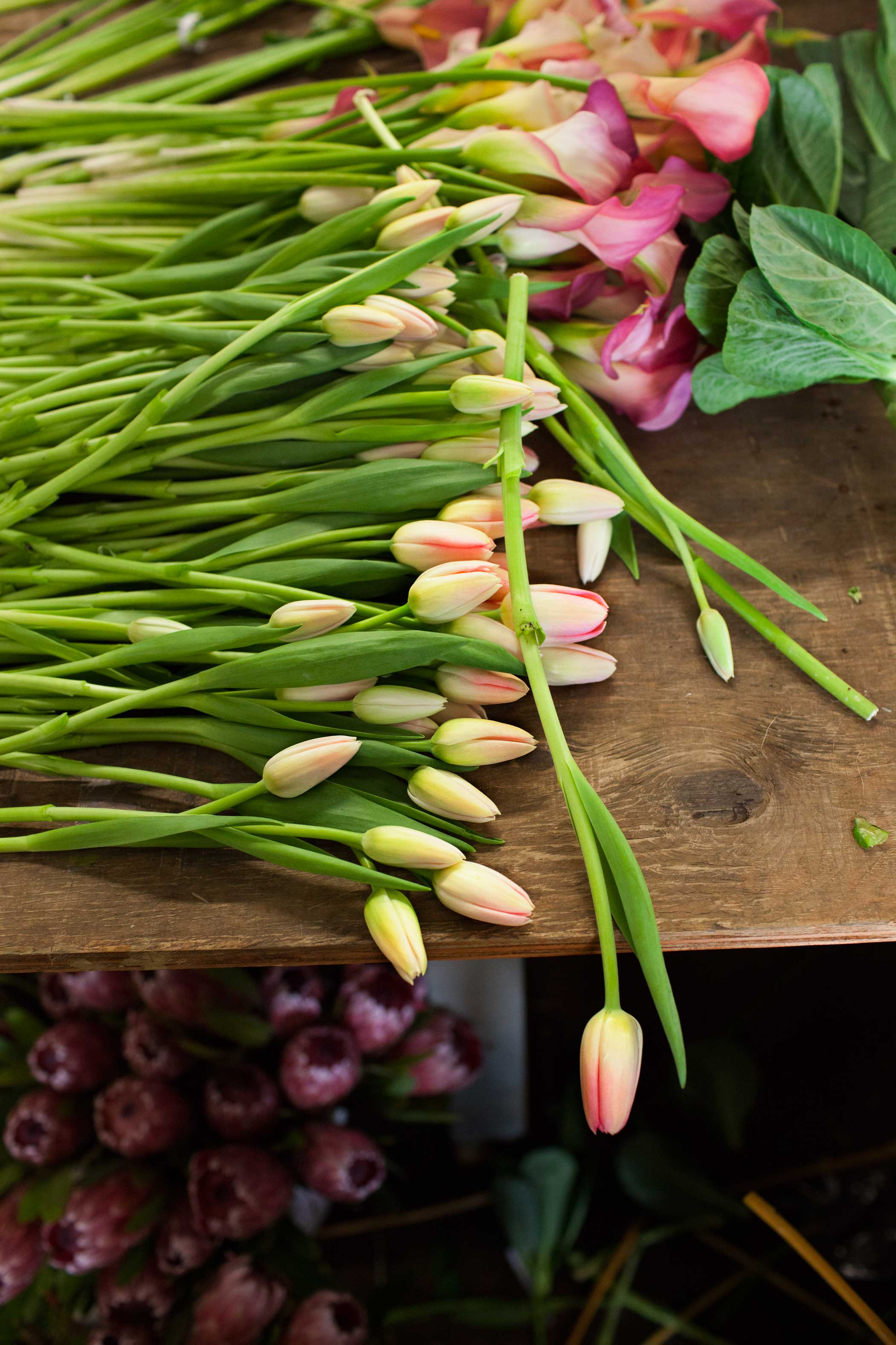 Tulips lie on the table before being added to arrangements.