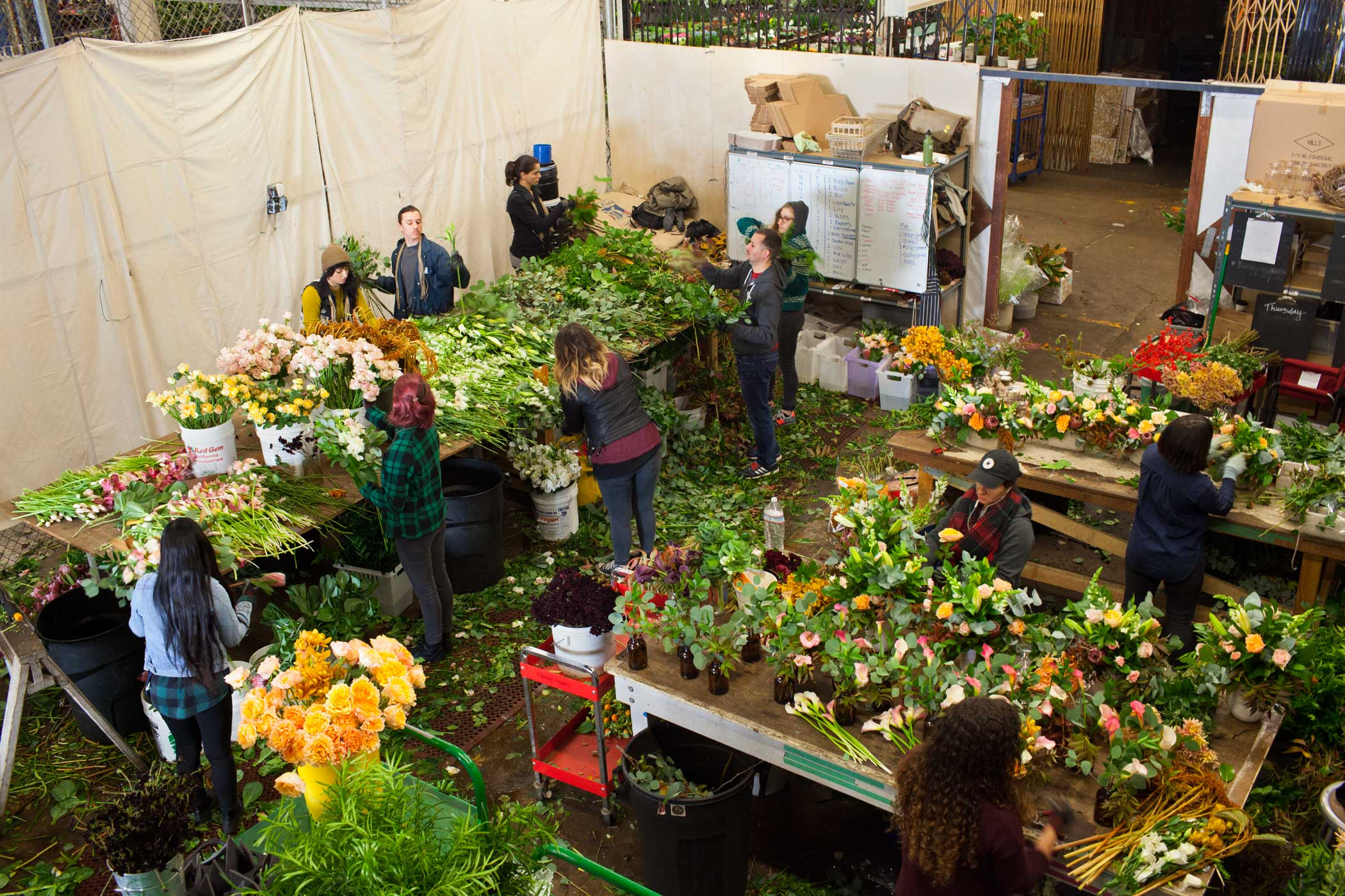 Employees sort flowers into bouquets at Farmgirl Flowers in the SF Flower Mart in San Francisco on Nov. 10, 2015.