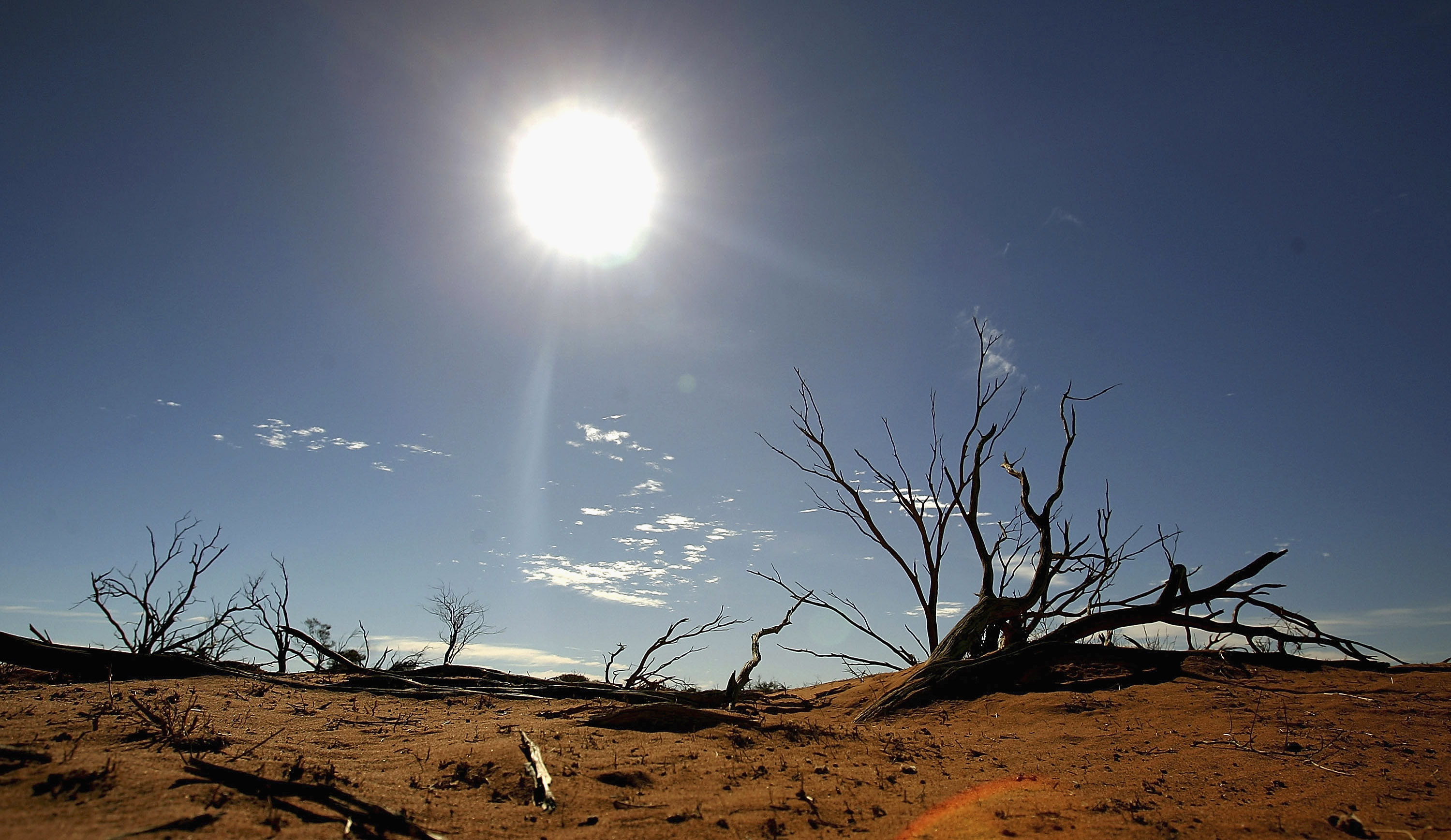 A file photo shows the sun shining on the outback landscape June 7, 2005 near Marree, Australia.