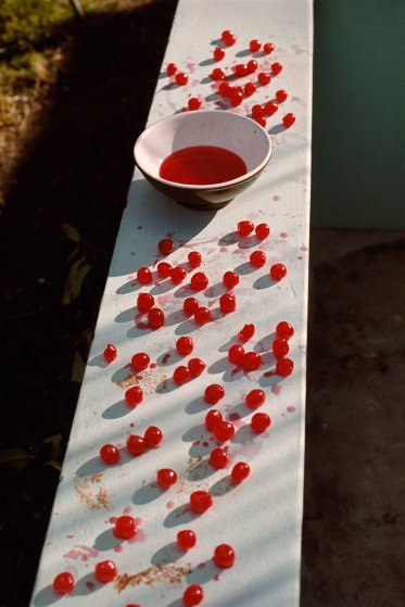 Cherries, Antigua, 1970