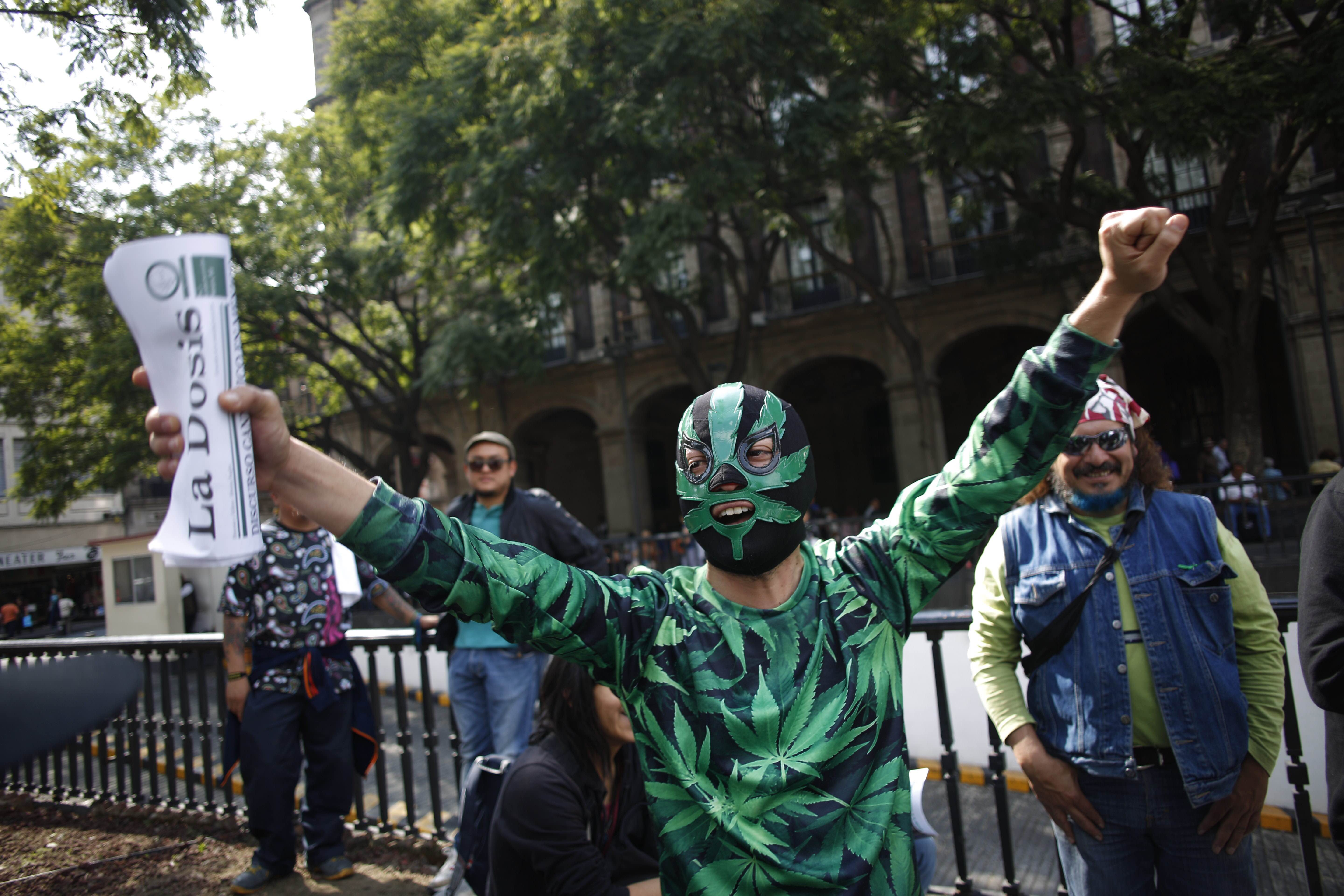 A supporter of the legalization of marijuana wears a Lucha Libre wrestling mask decorated with a marijuana leaf, as he celebrates outside the Supreme Court in Mexico City on Nov. 4, 2015.