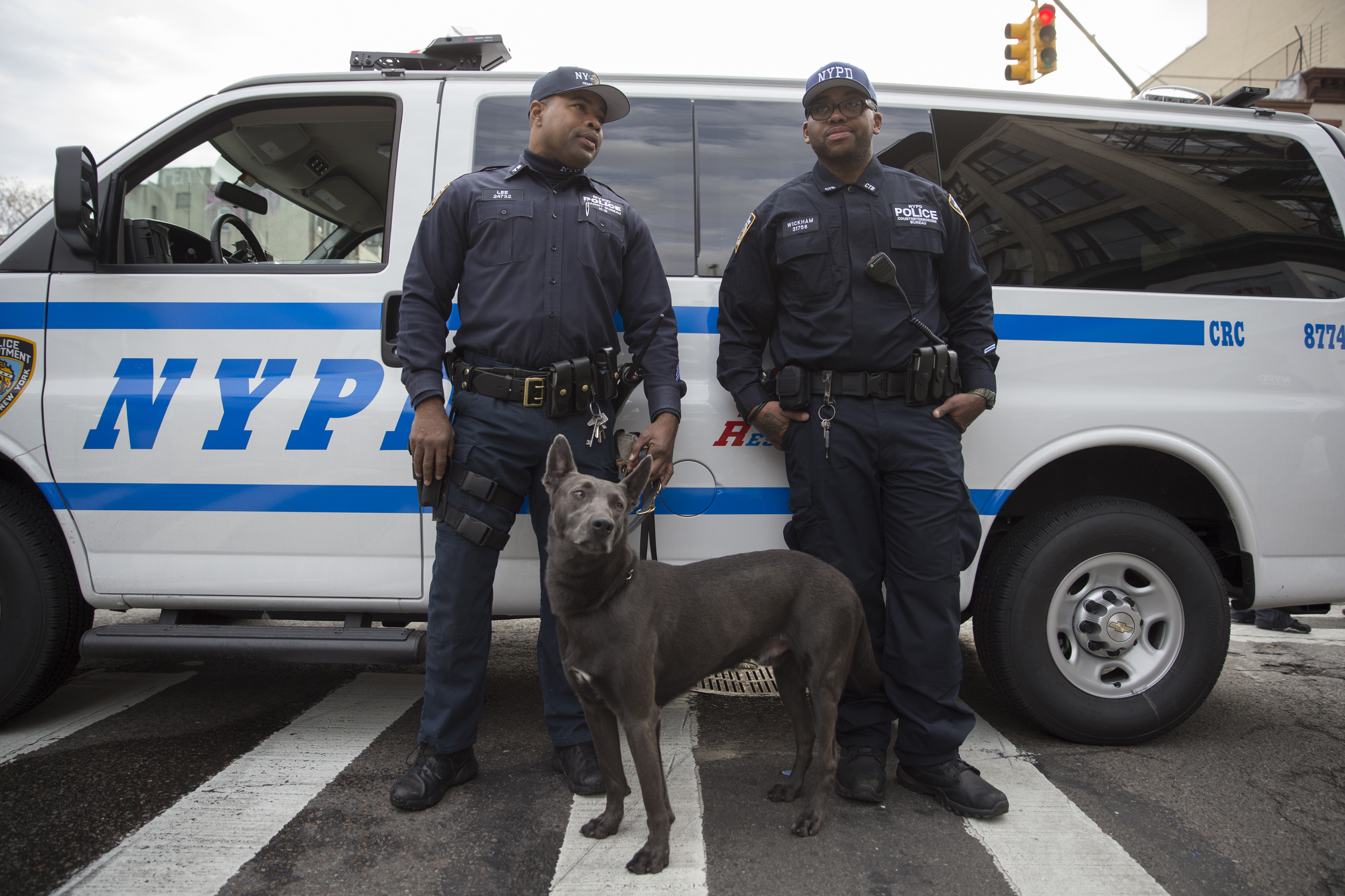 New York City Police officers from the K-9 Unit during an active shooter drill in New York City on Nov. 22, 2015.